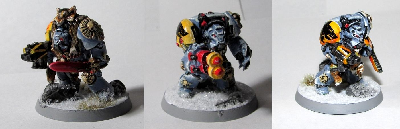 Space Wolves, Sw, Terminator Armor, Wolf Guard