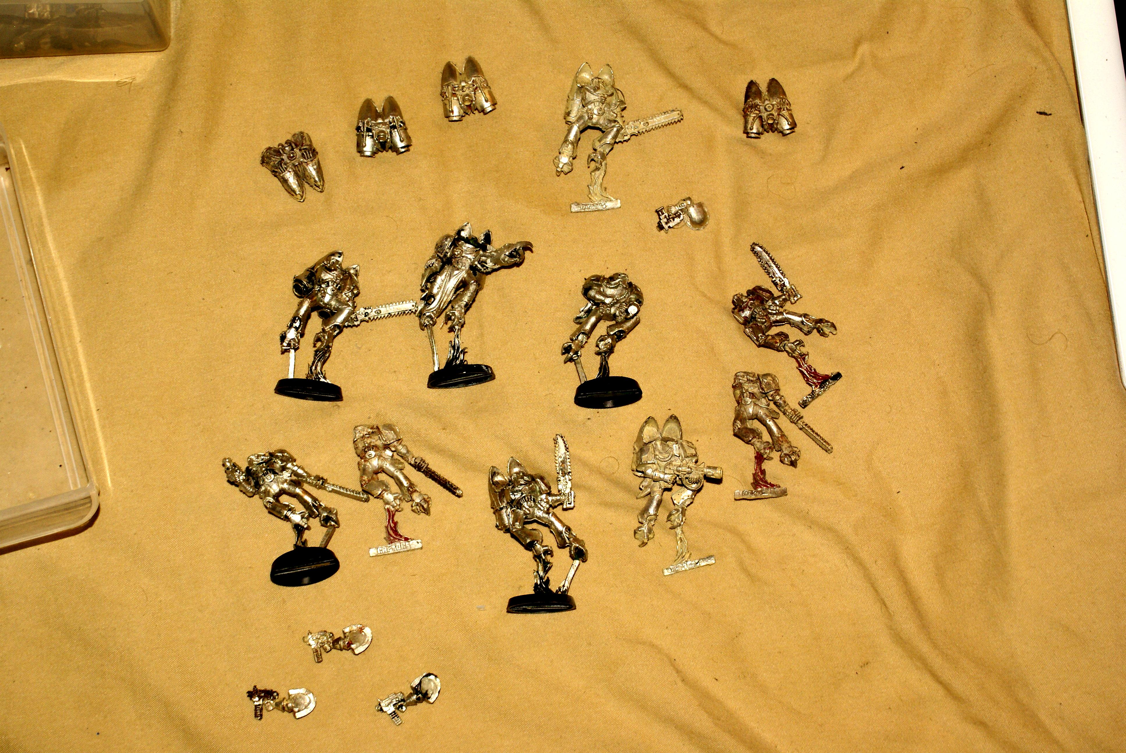 metal raptors