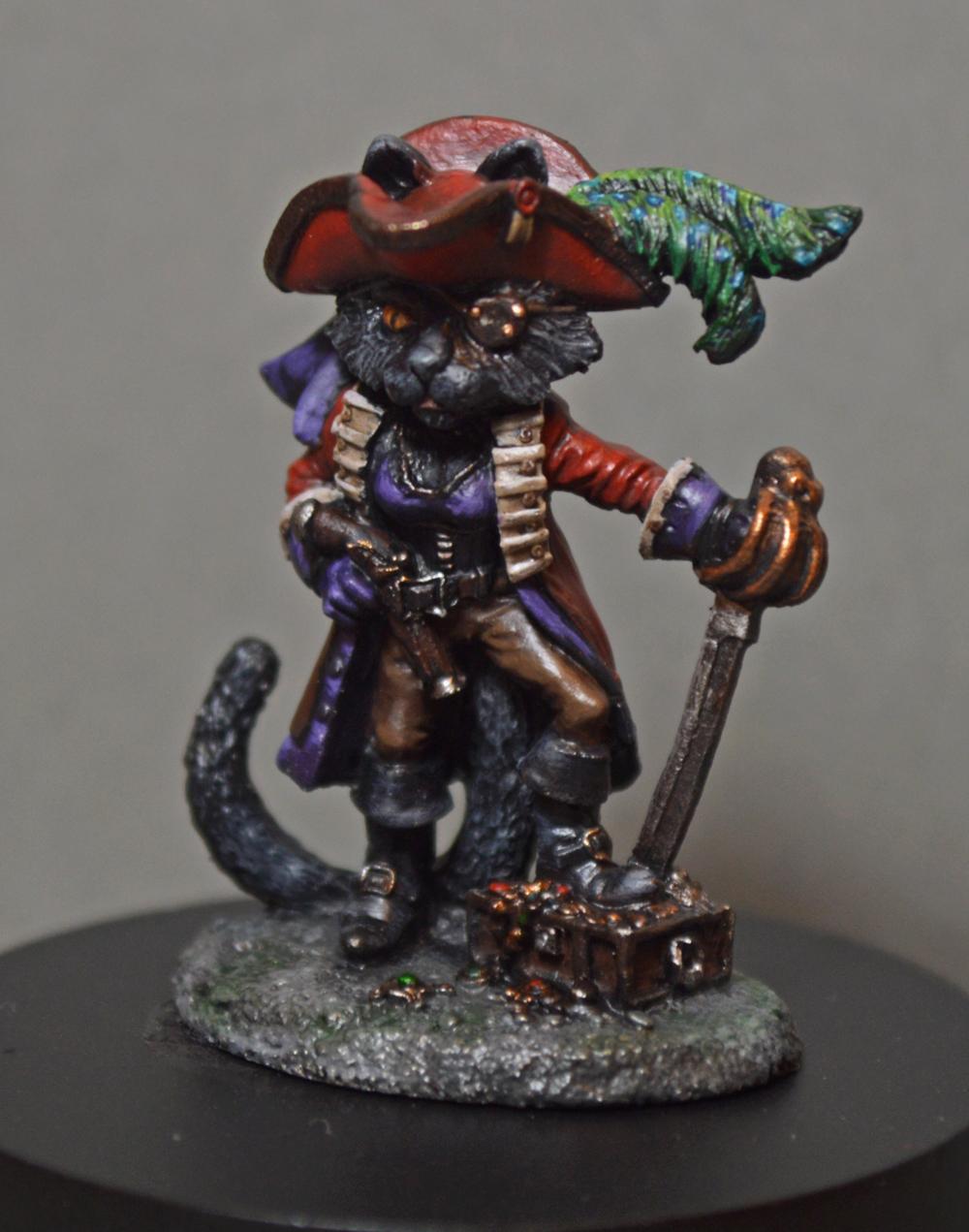 Cat, Display, Pirate