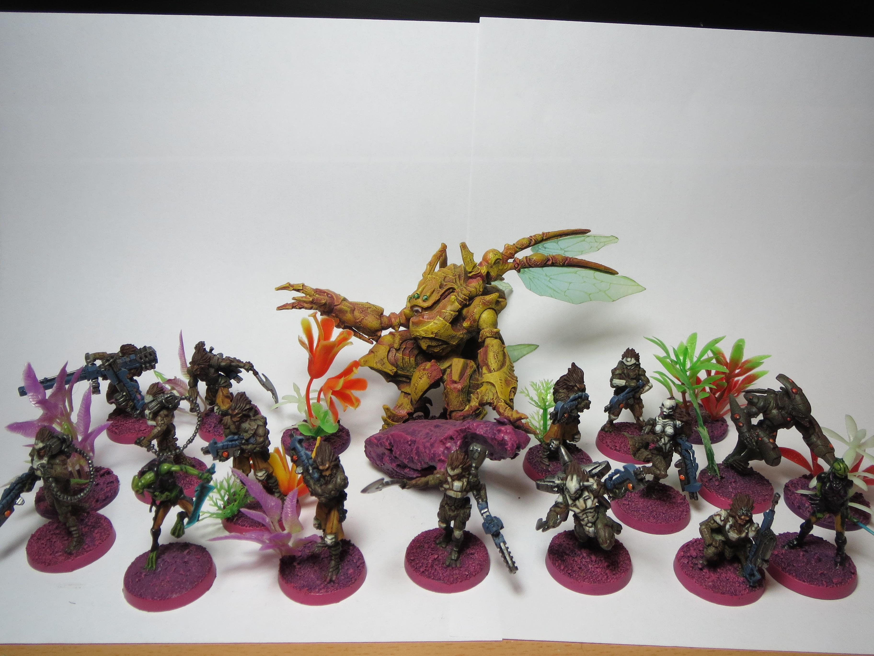 Infinity Combined Army Morats and TAG