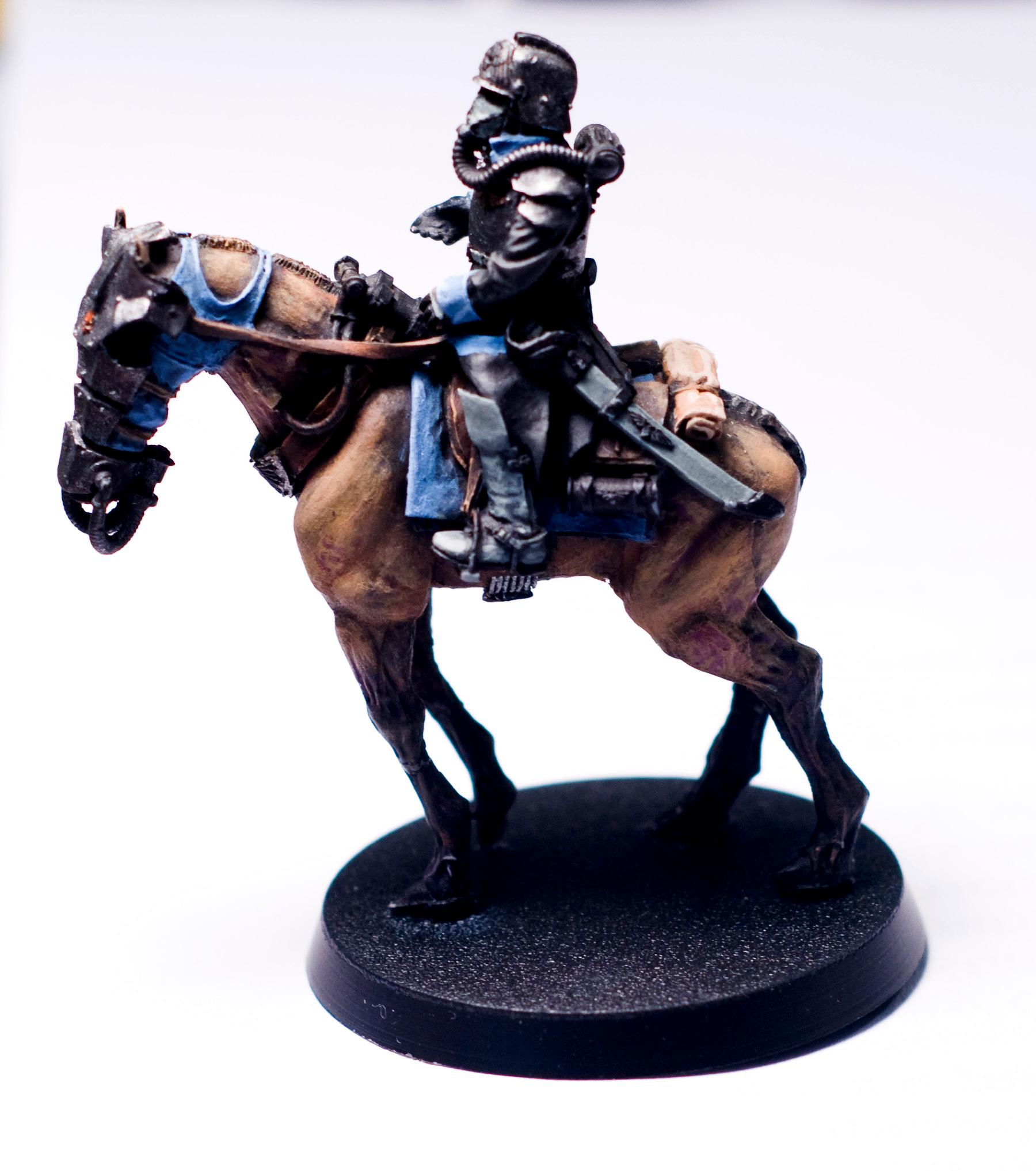 Imperial Guard, Rider, Work In Progress