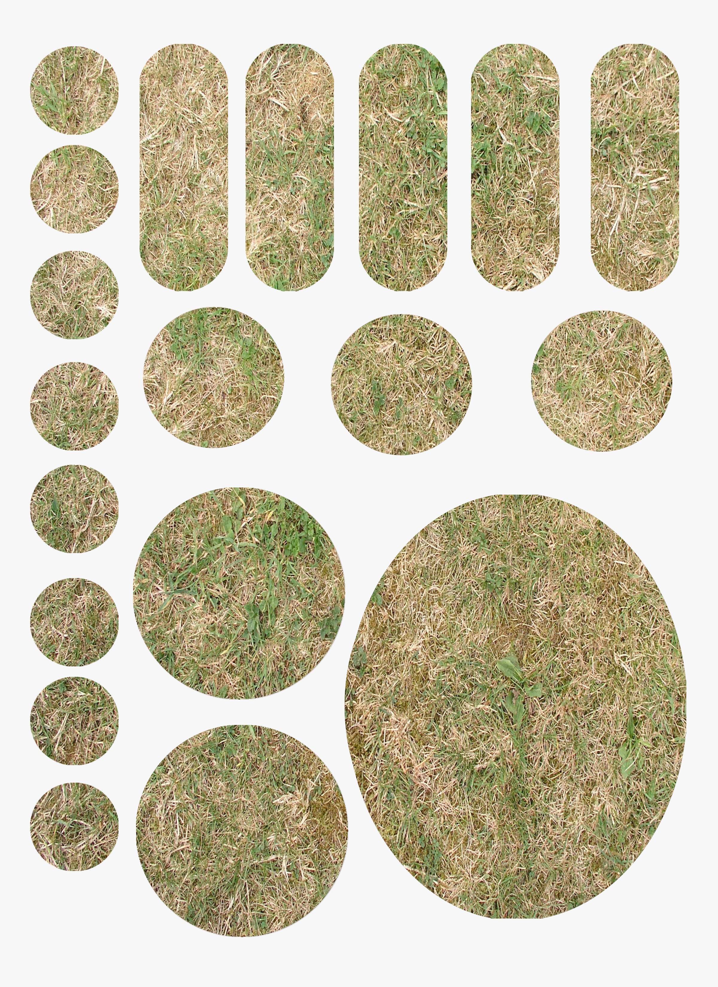 Grass Bases