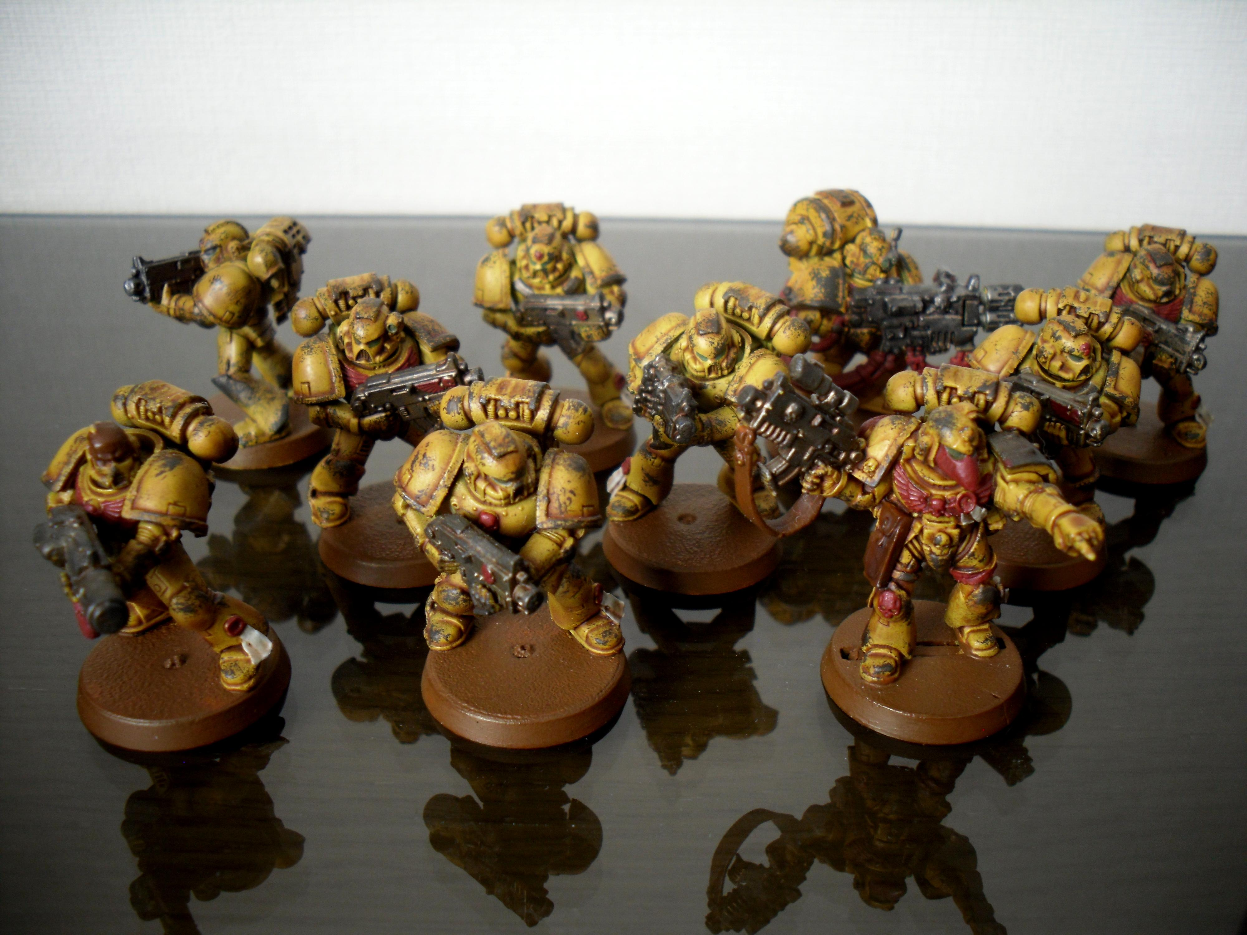 Imperial Fists, Space Marines, Tactical Squad, Yellow