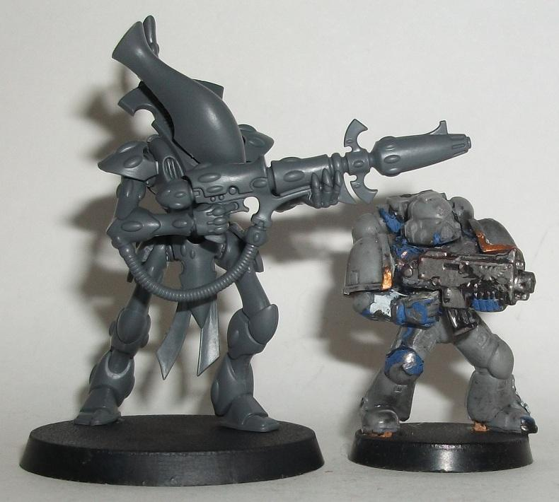 Wraithguard to Space Marine Size Comparison