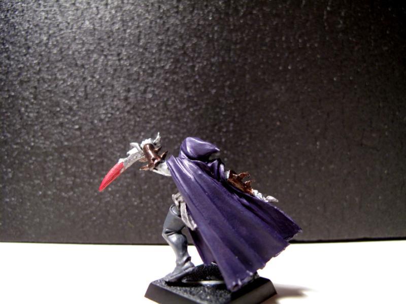 Assassin, Dark Elves, Warriors