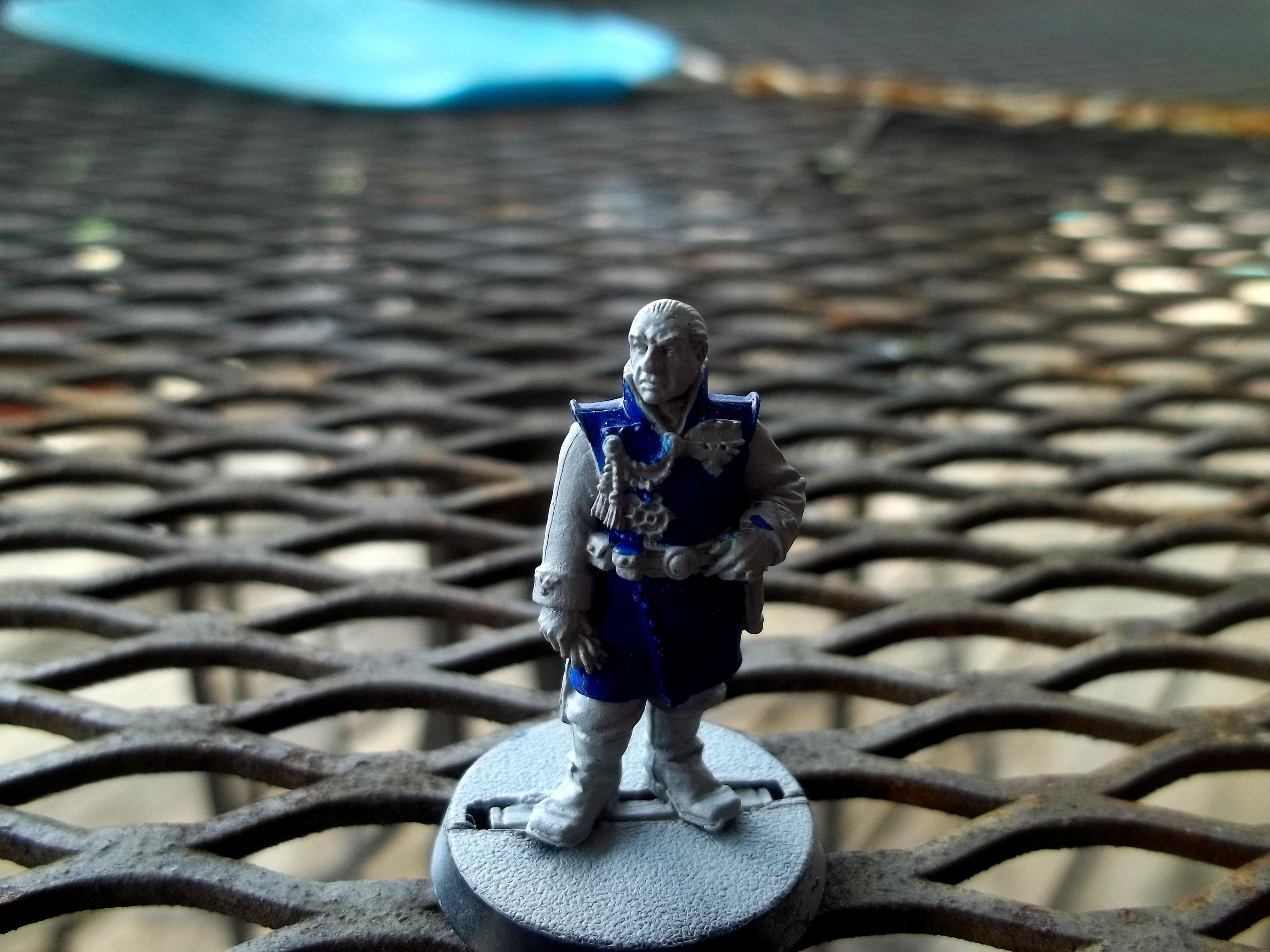Officer of the fleet