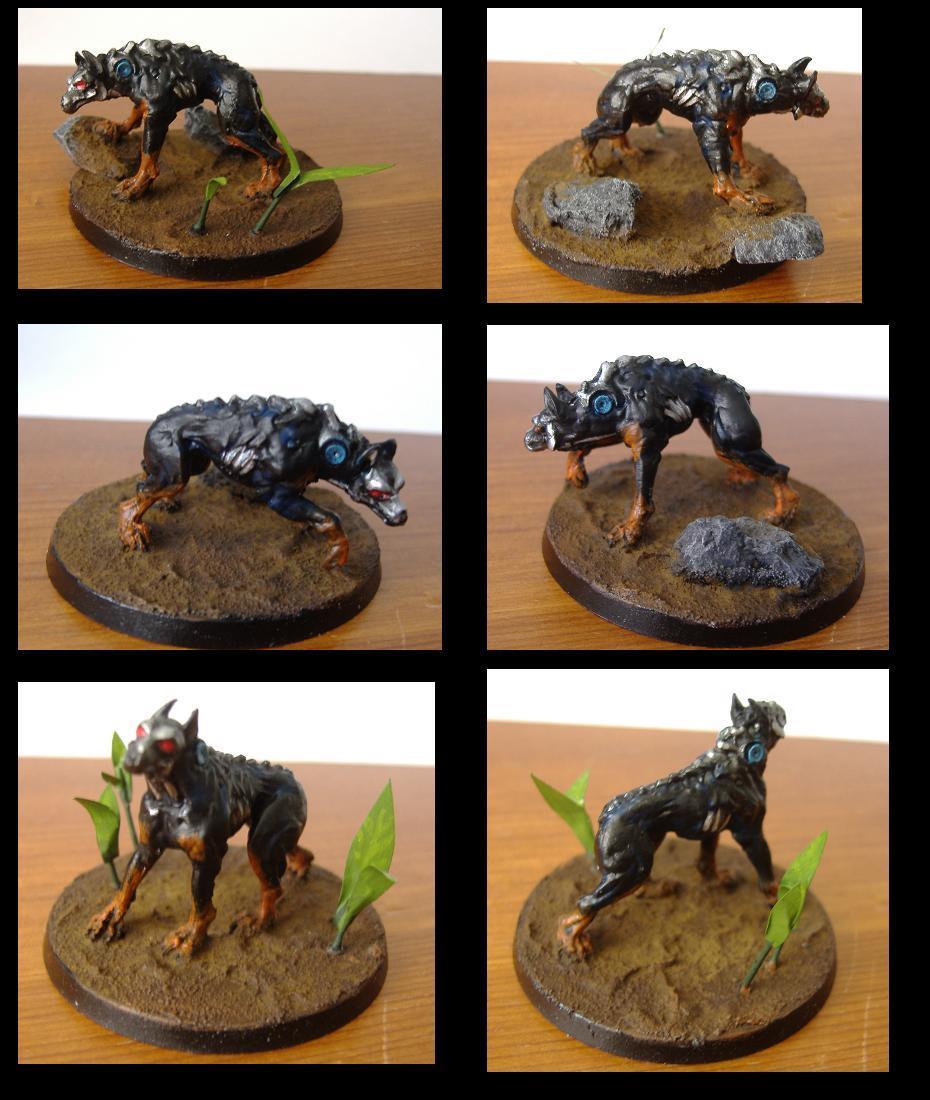 Cyberwolves, Skyrar's Dark Wolves