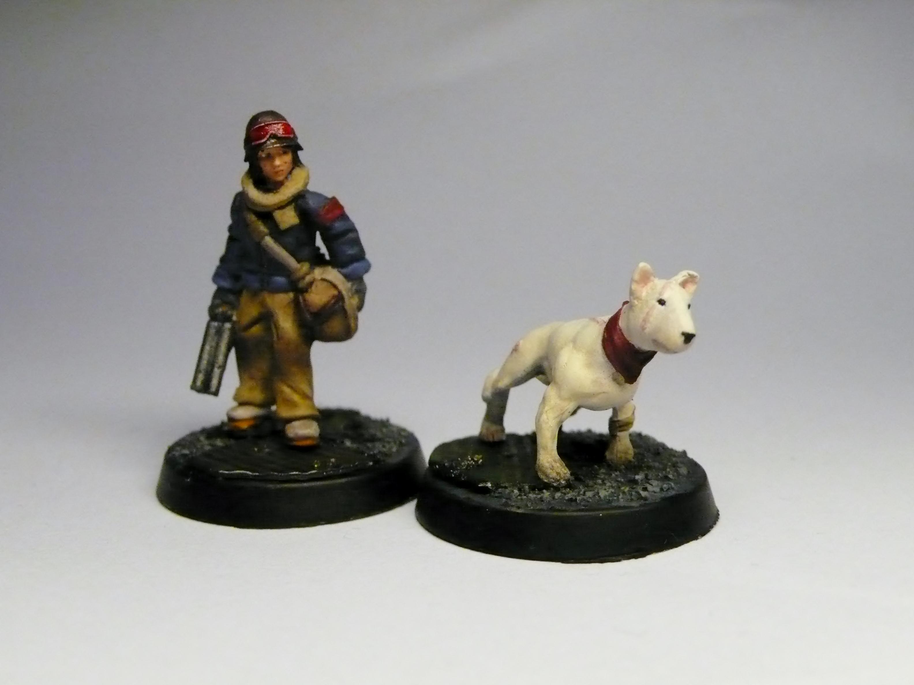 Bag, Dog, Female, Juve, Shotgun, Terrier