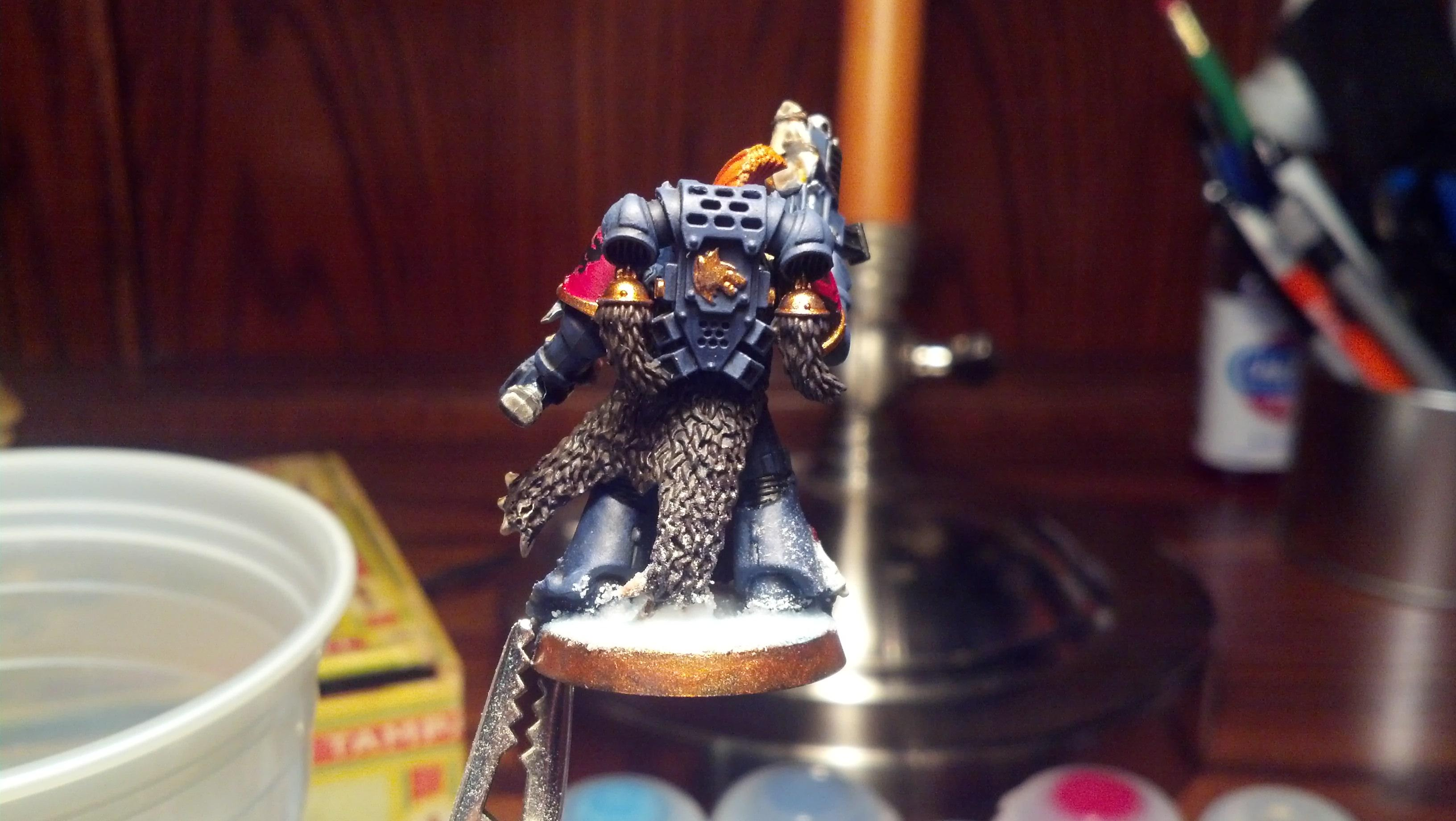 First Model, Grey Hunter, Space Wolves