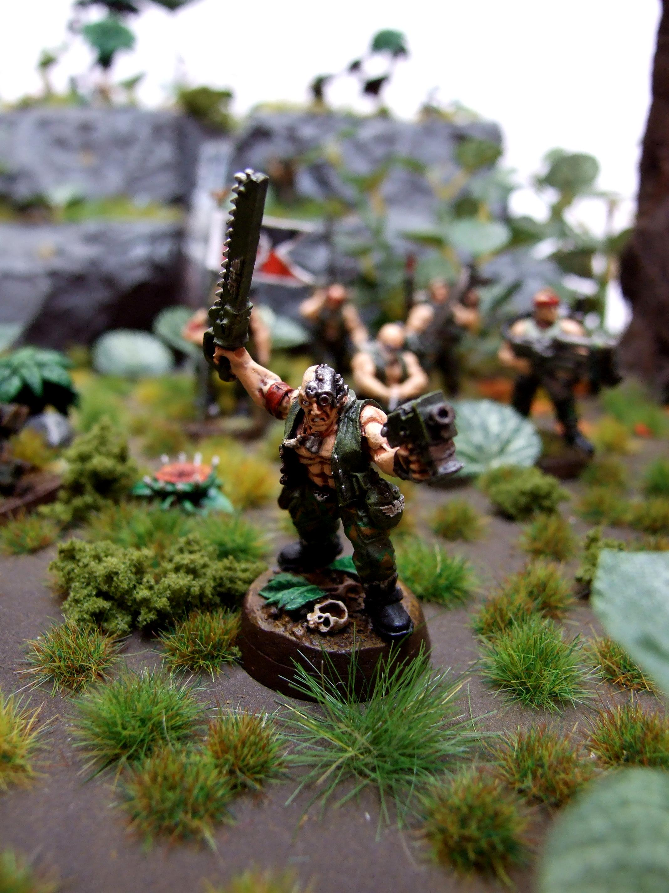2013, Aop, Armies On Parade, Catachan, Imperial Guard, Jungle, Jungle Fighter, Jungle Scenery, Warhammer 40,000, Winner