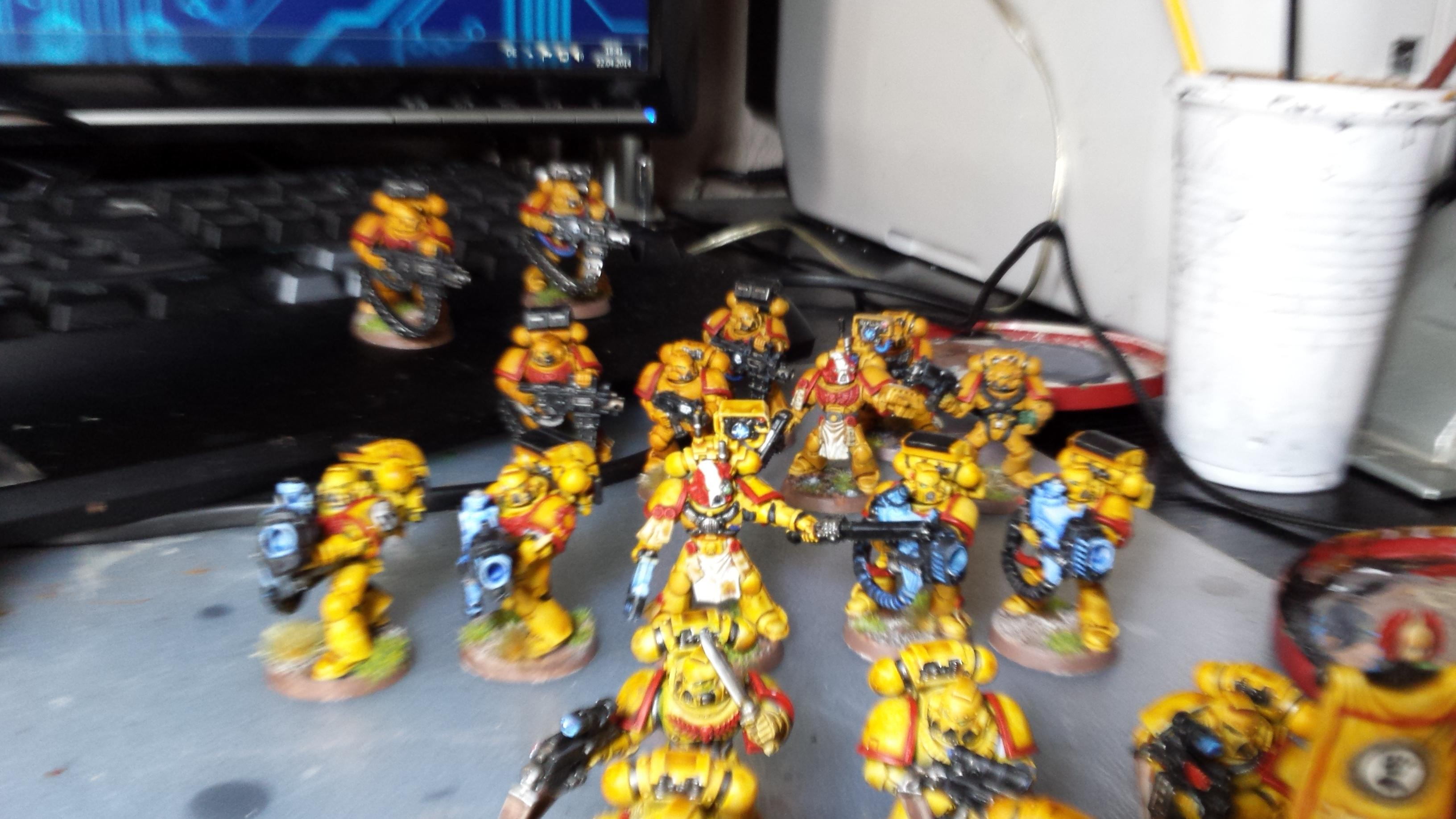 Imperial Fists, Davstor Squads 2