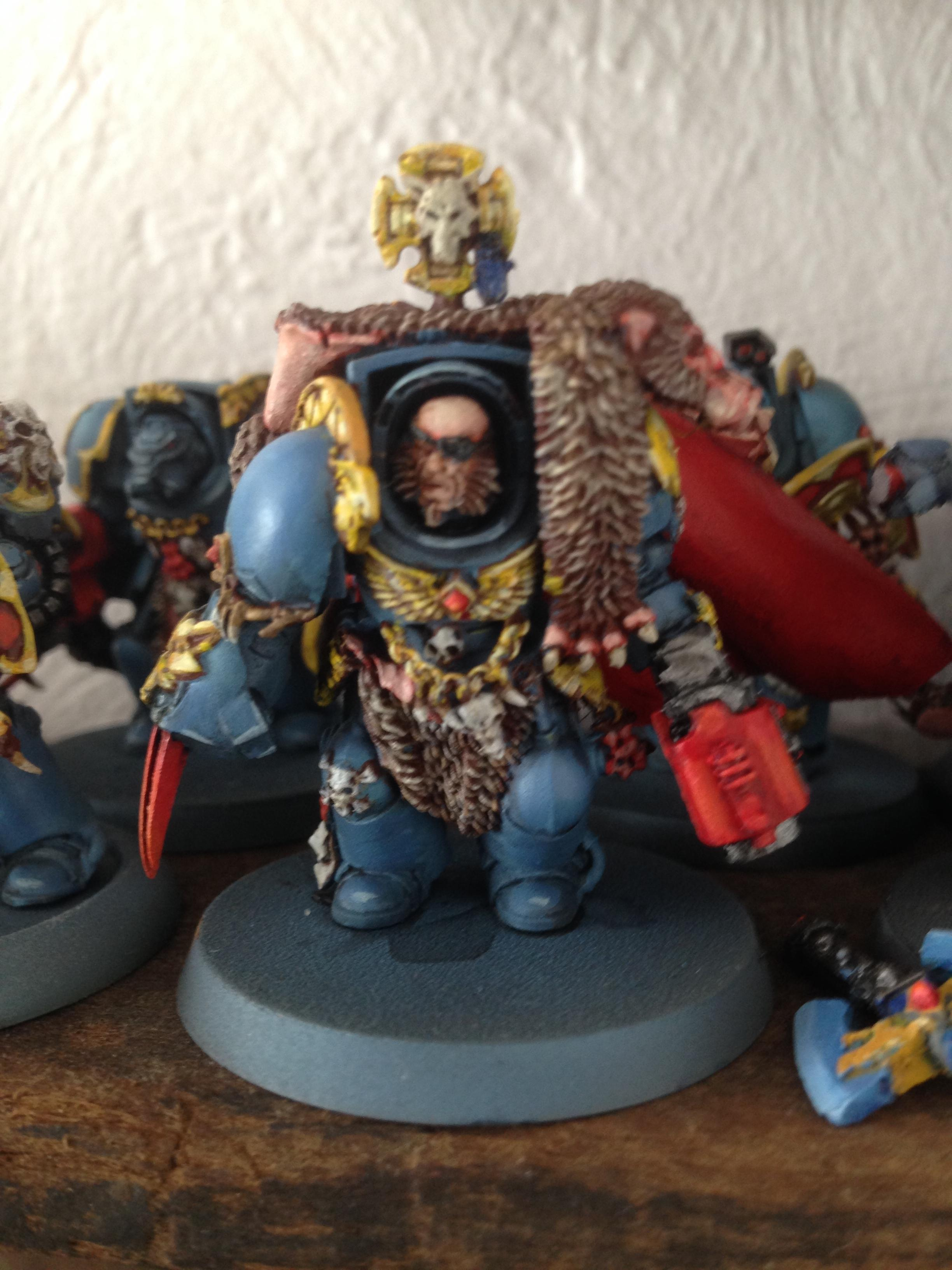 Space Wolves, Wolves