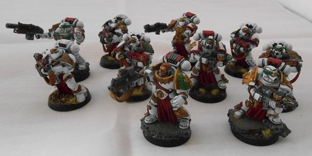 Army, Finished, Showcase, Space Marines, Sternguard, White Scars