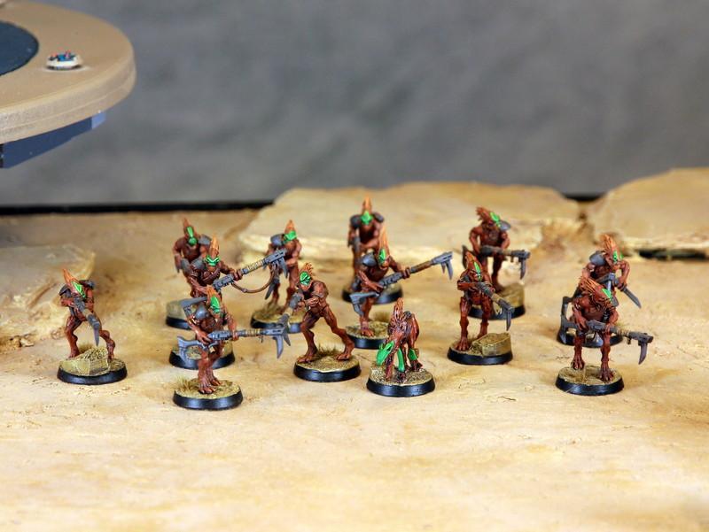 Army, Bork'an, Kroot, Tau, Troops, Warhammer 40,000