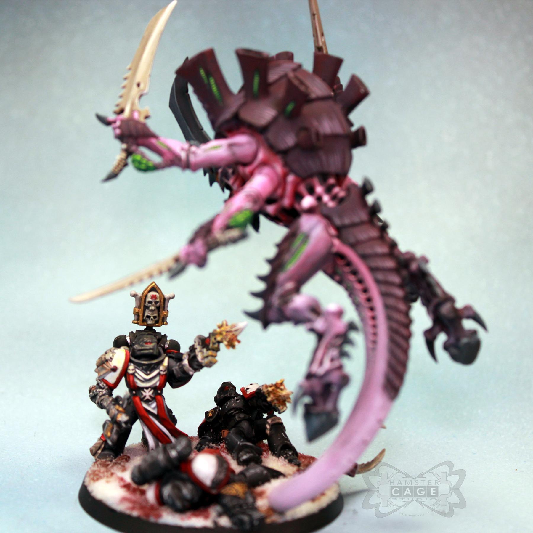 Black Templars, Tyranids