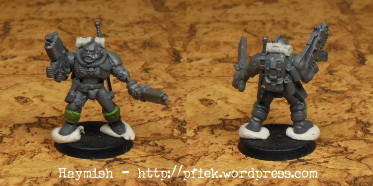 Conversion, Homebrew Chapter, Space Wolves, Wolf Scouts, Work In Progress