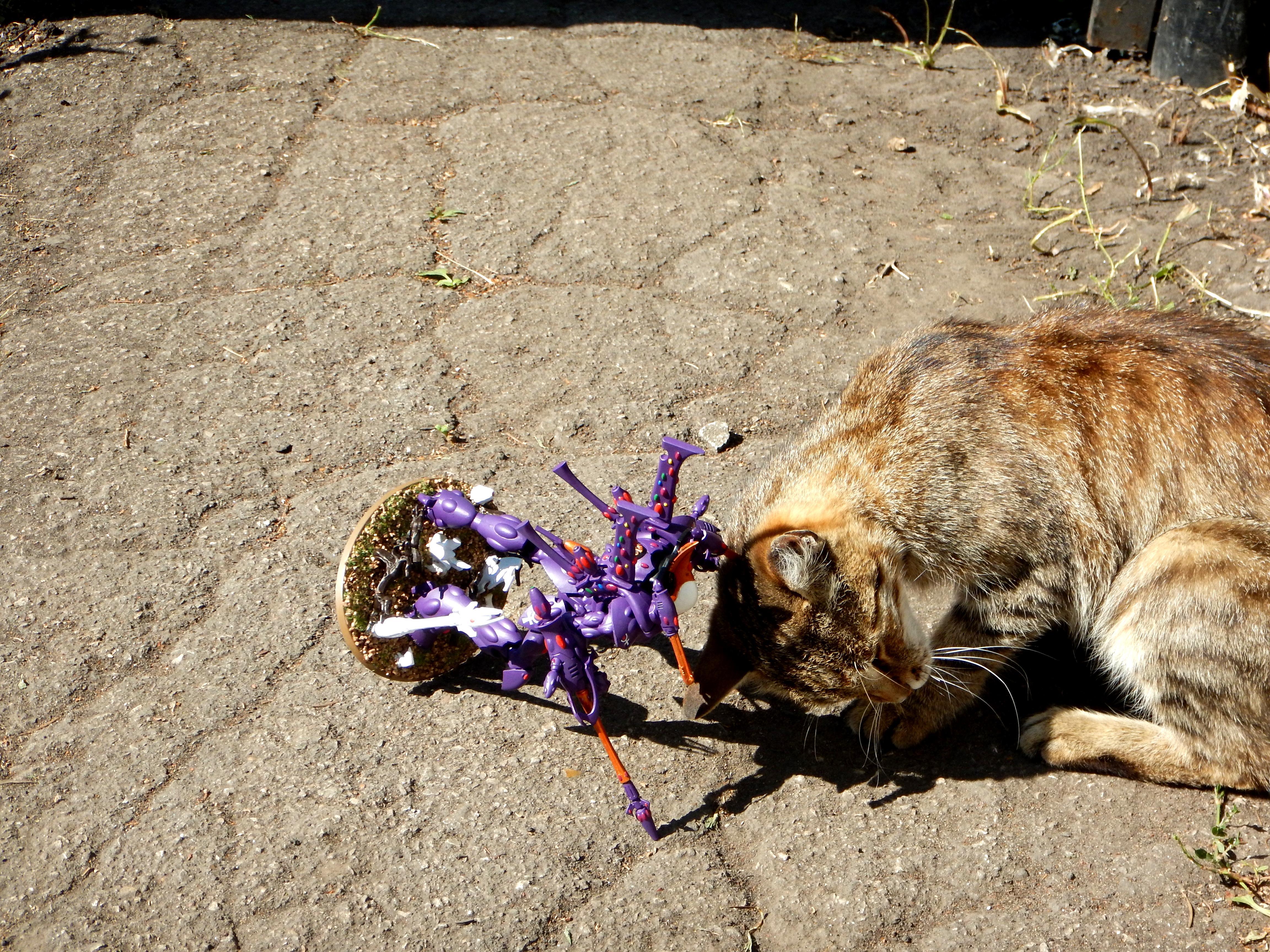 Cat, Eldar, Wraithknight