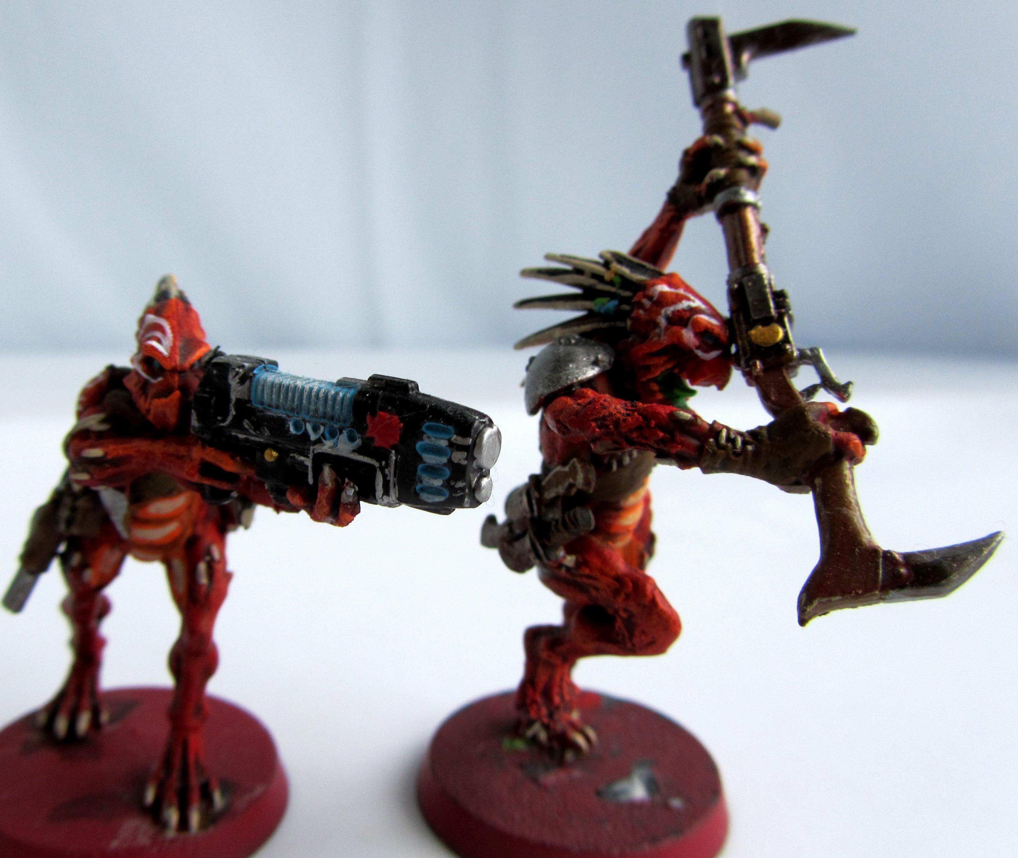 Dynamic, Kroot, Kroot Conversion, Kroot Conversion Red-kroot Custom, Plasma, Red-kroot Custom