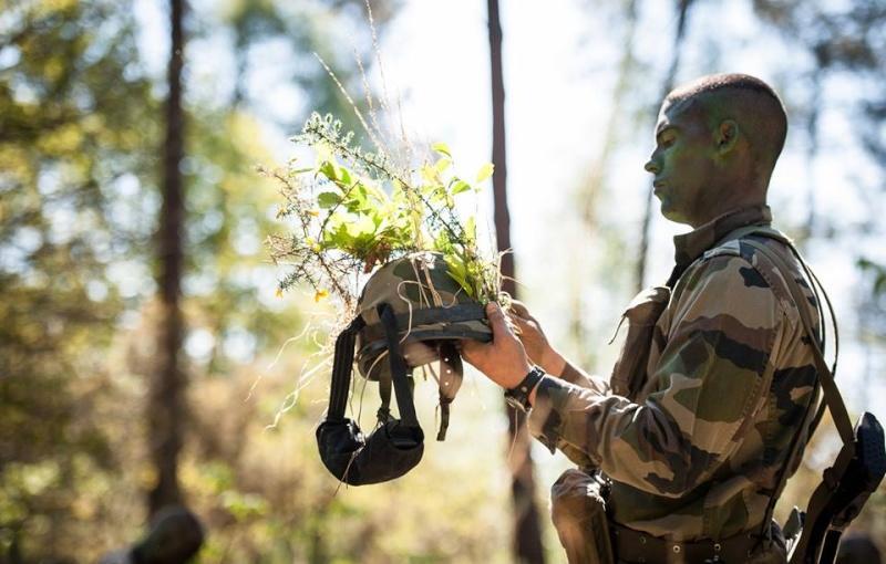 Helmet with greenery