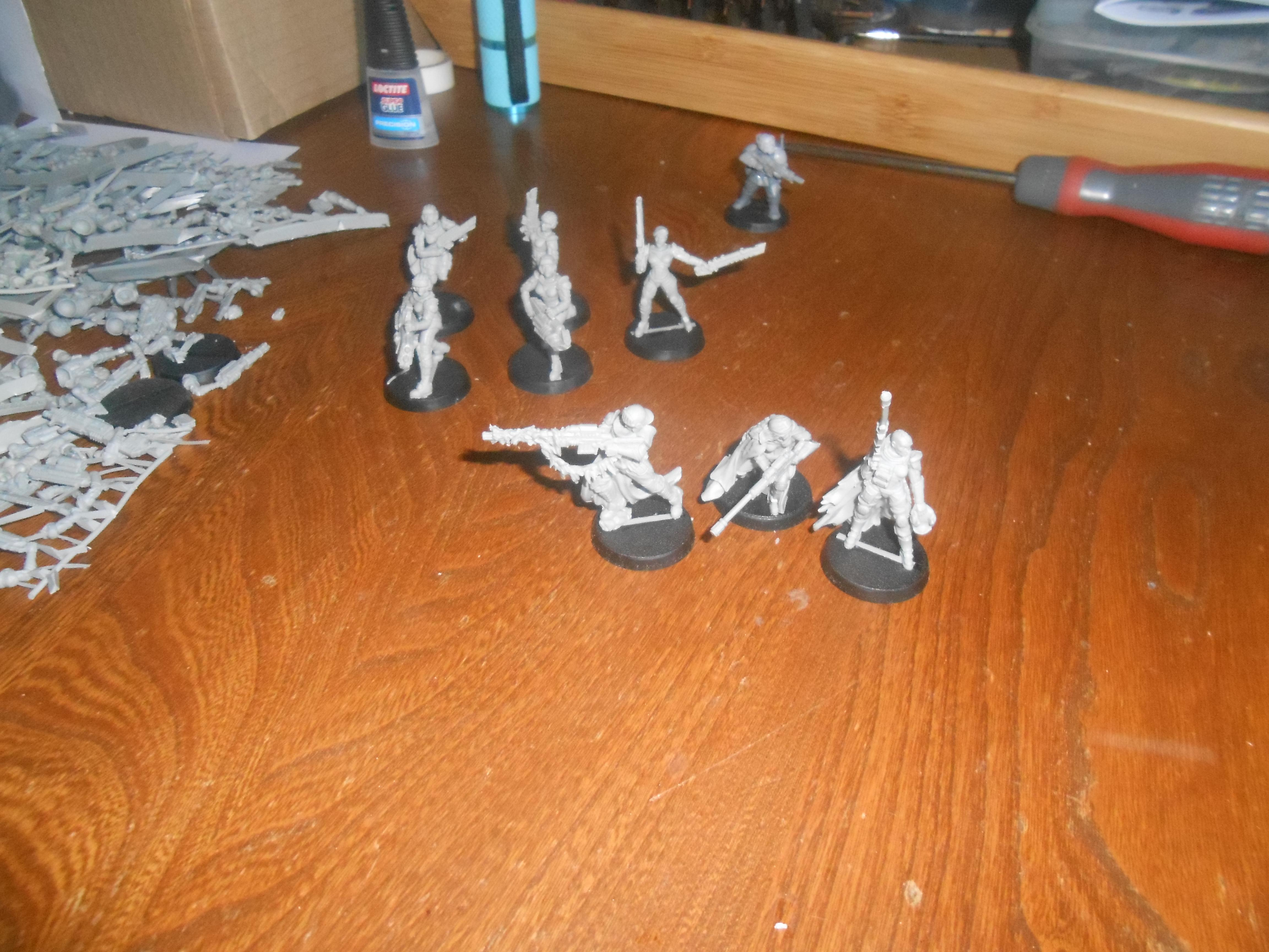 Imperial Guard, Raging Heroes