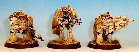 Carcharodons, Seal, Seals, Space Marines, Space Sharks