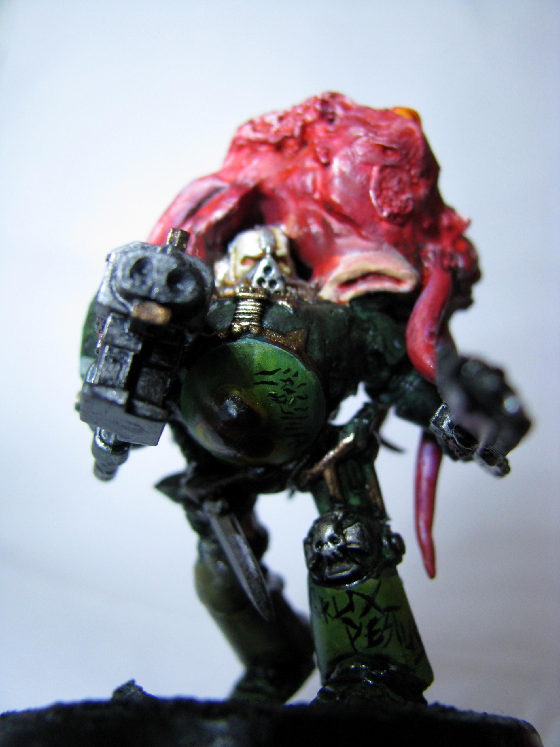 Chaos, Chaos Space Marines, Conversion, Nurgle, Terminator Armor