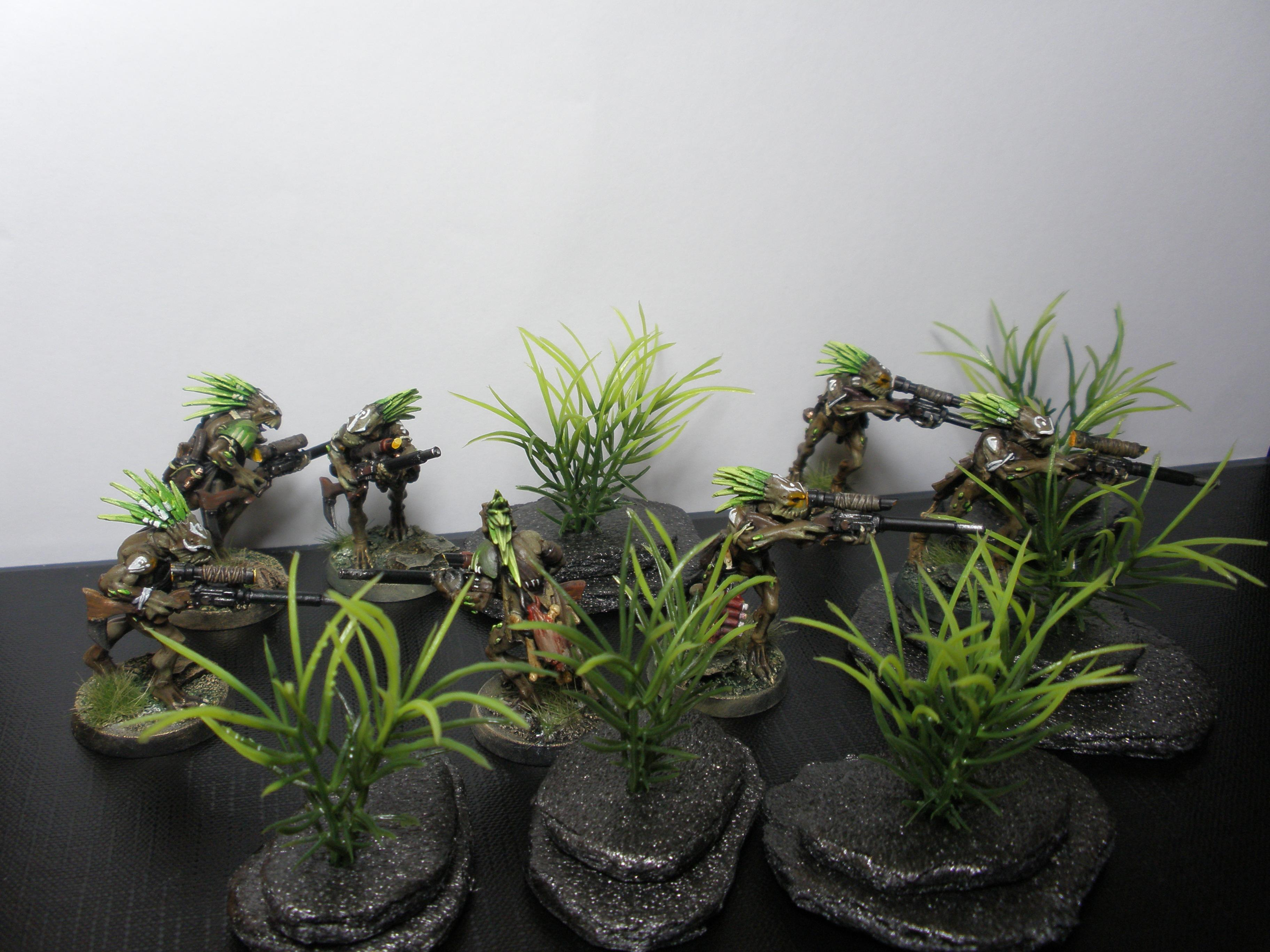 Hunters, Kroot, Snipers