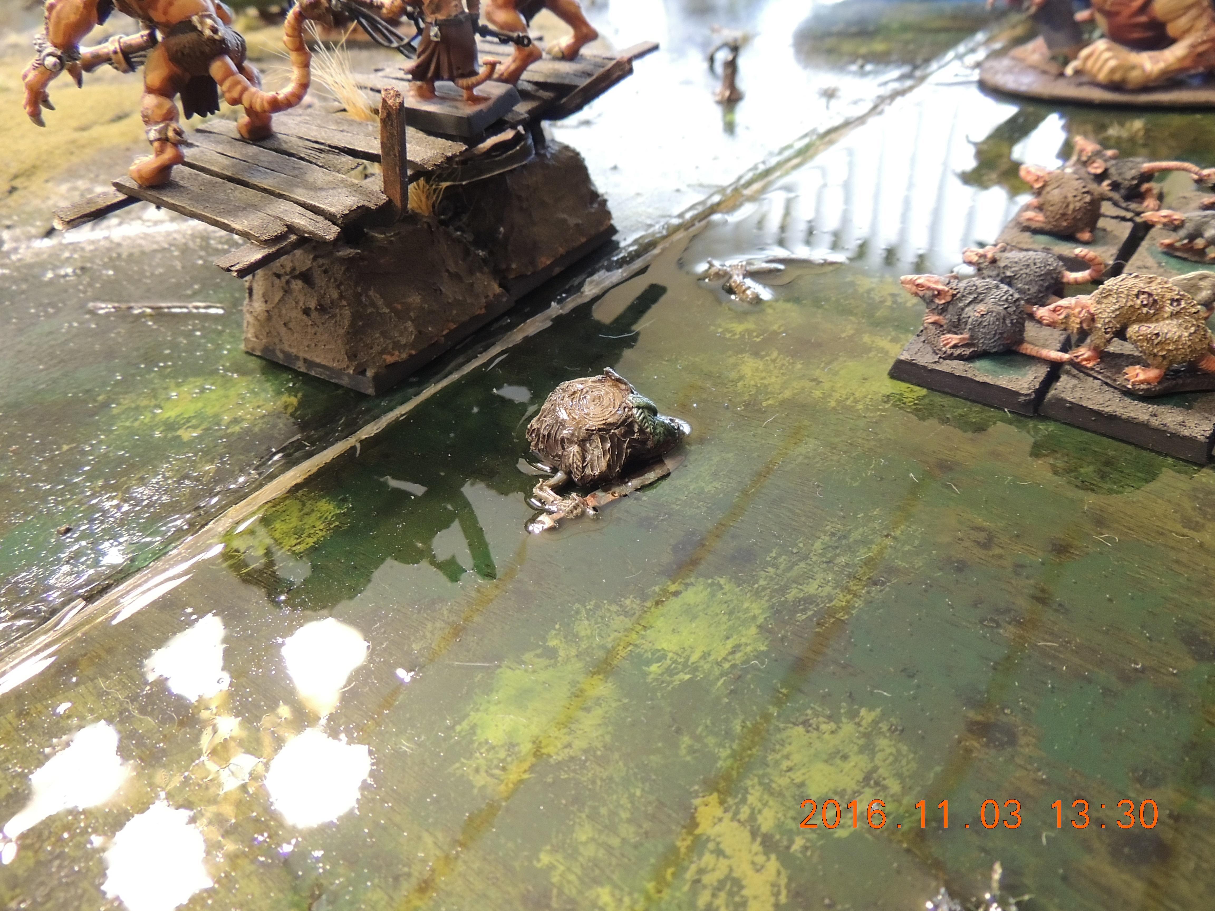 Board, Swamp, Terrain