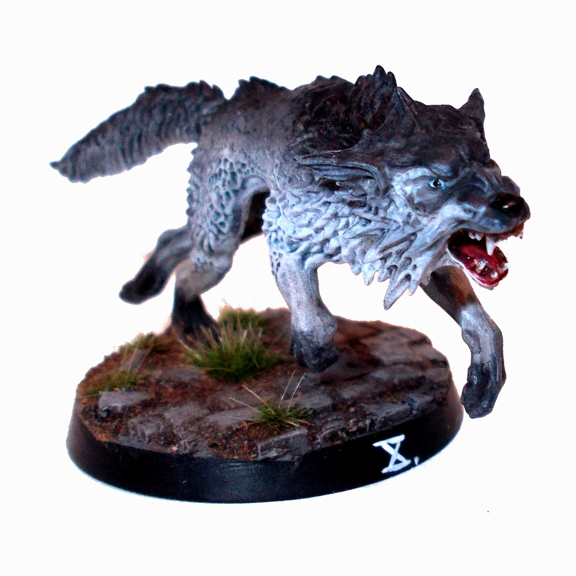 Dwarves, Mordheim, Azril the Wolf