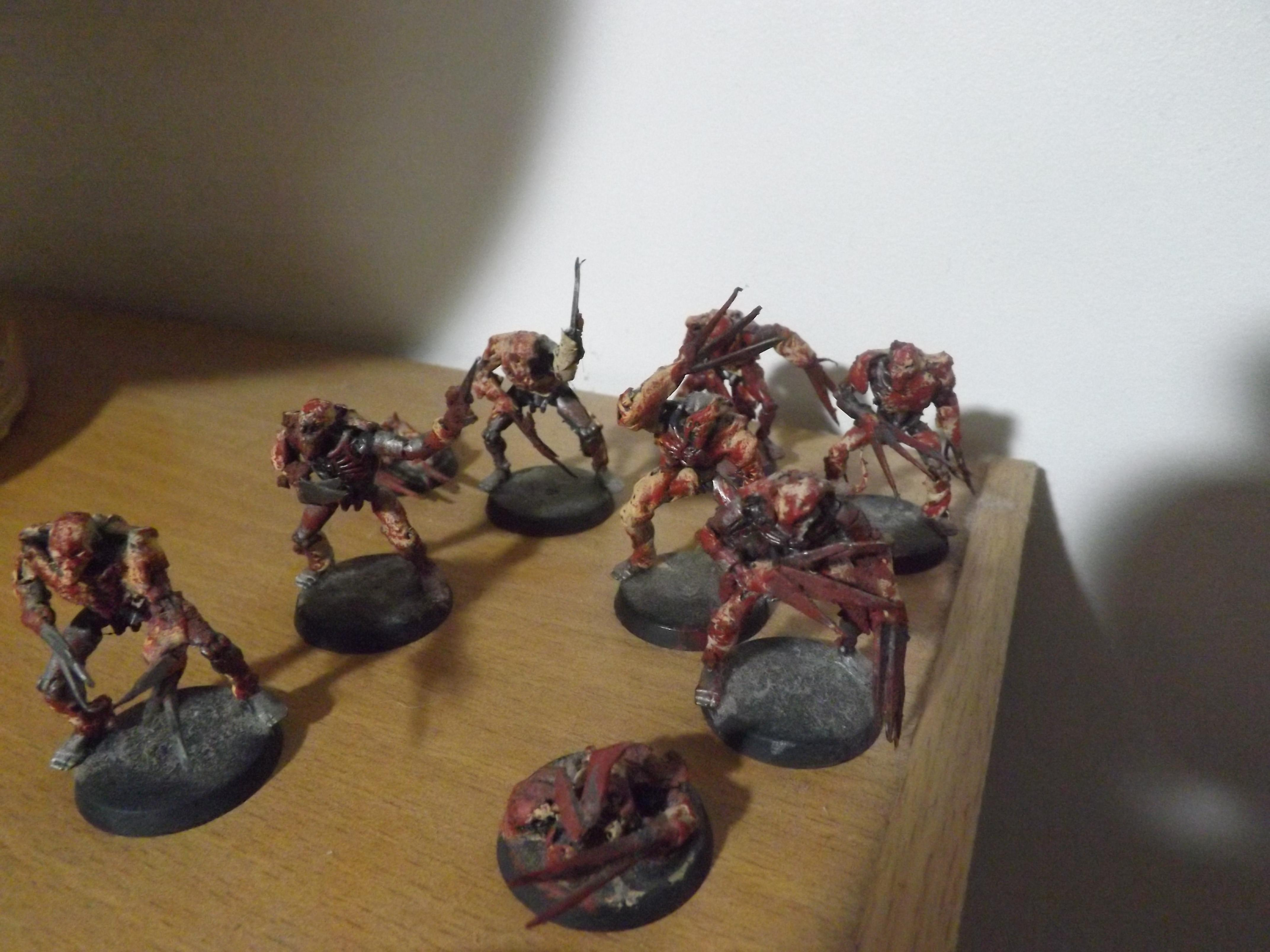 Budget Flayed Ones