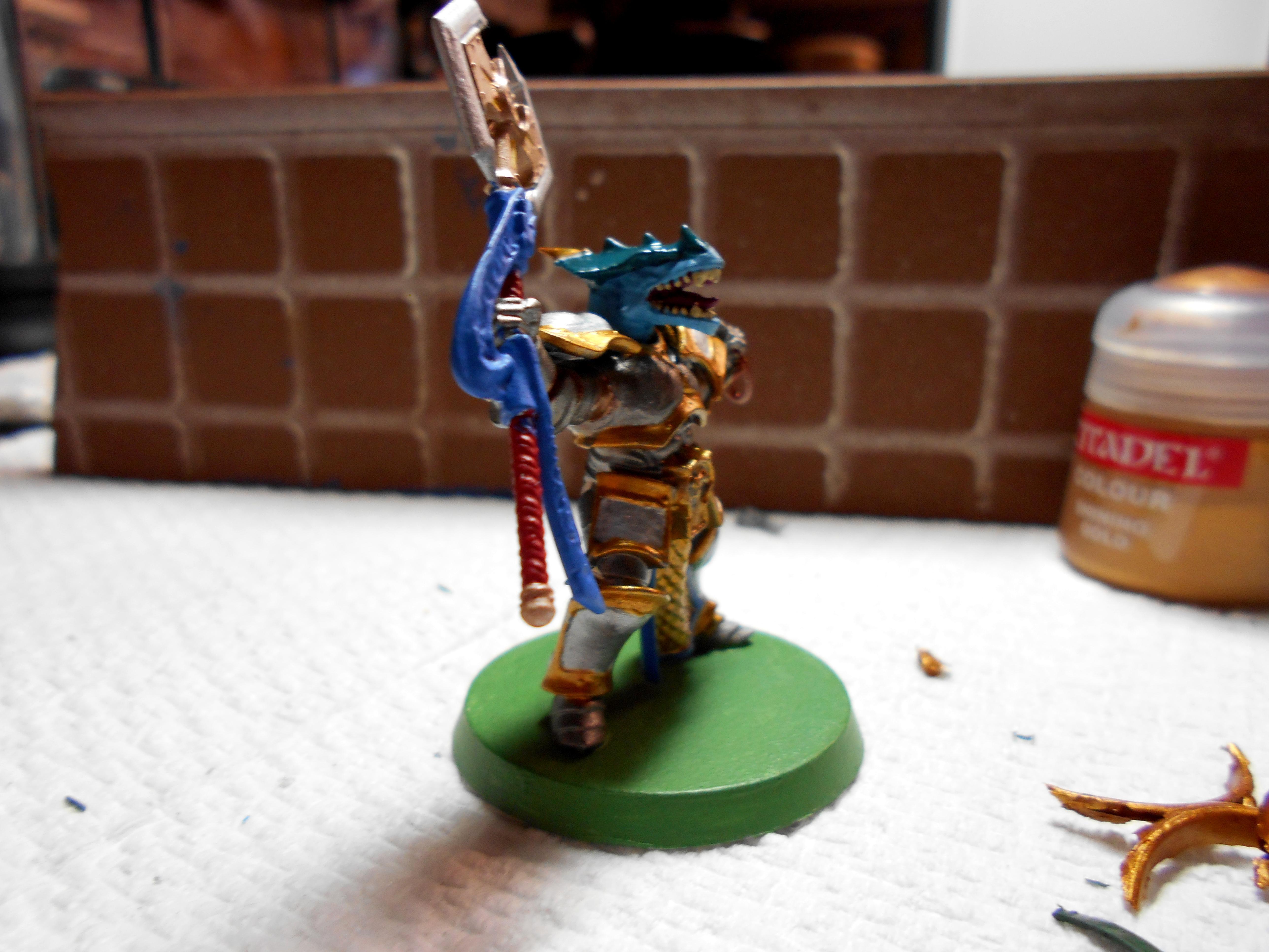 Dragonborn Paladin 35