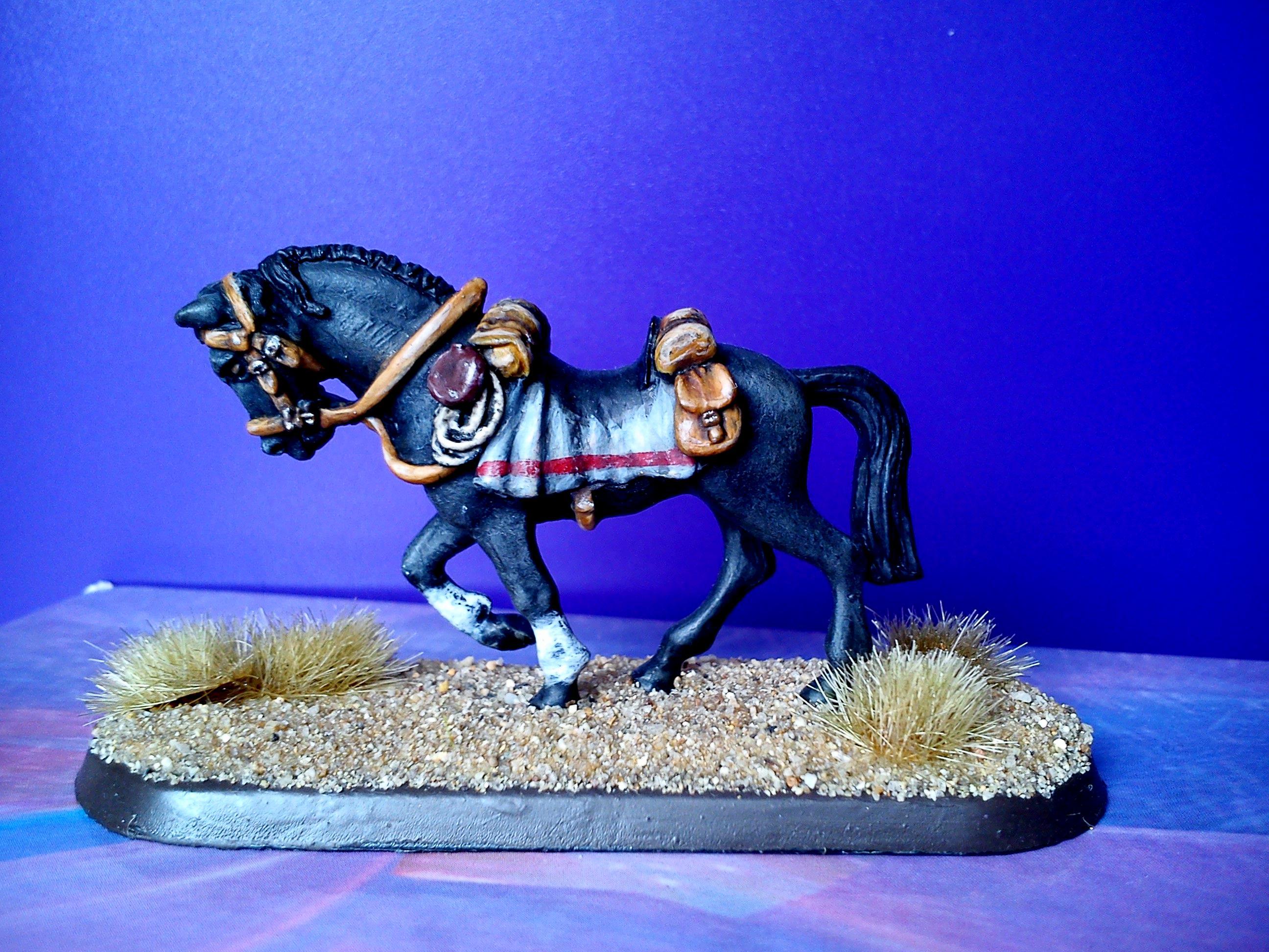 Dead mans hand,Horse