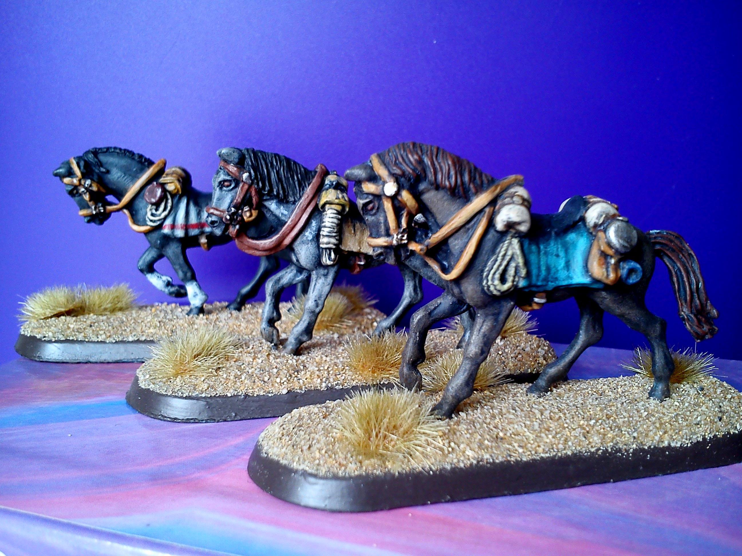 Dead mans hand,Horses