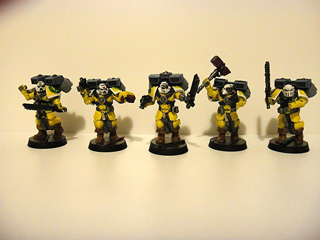 Imperial Fists, Vanguard Veterans