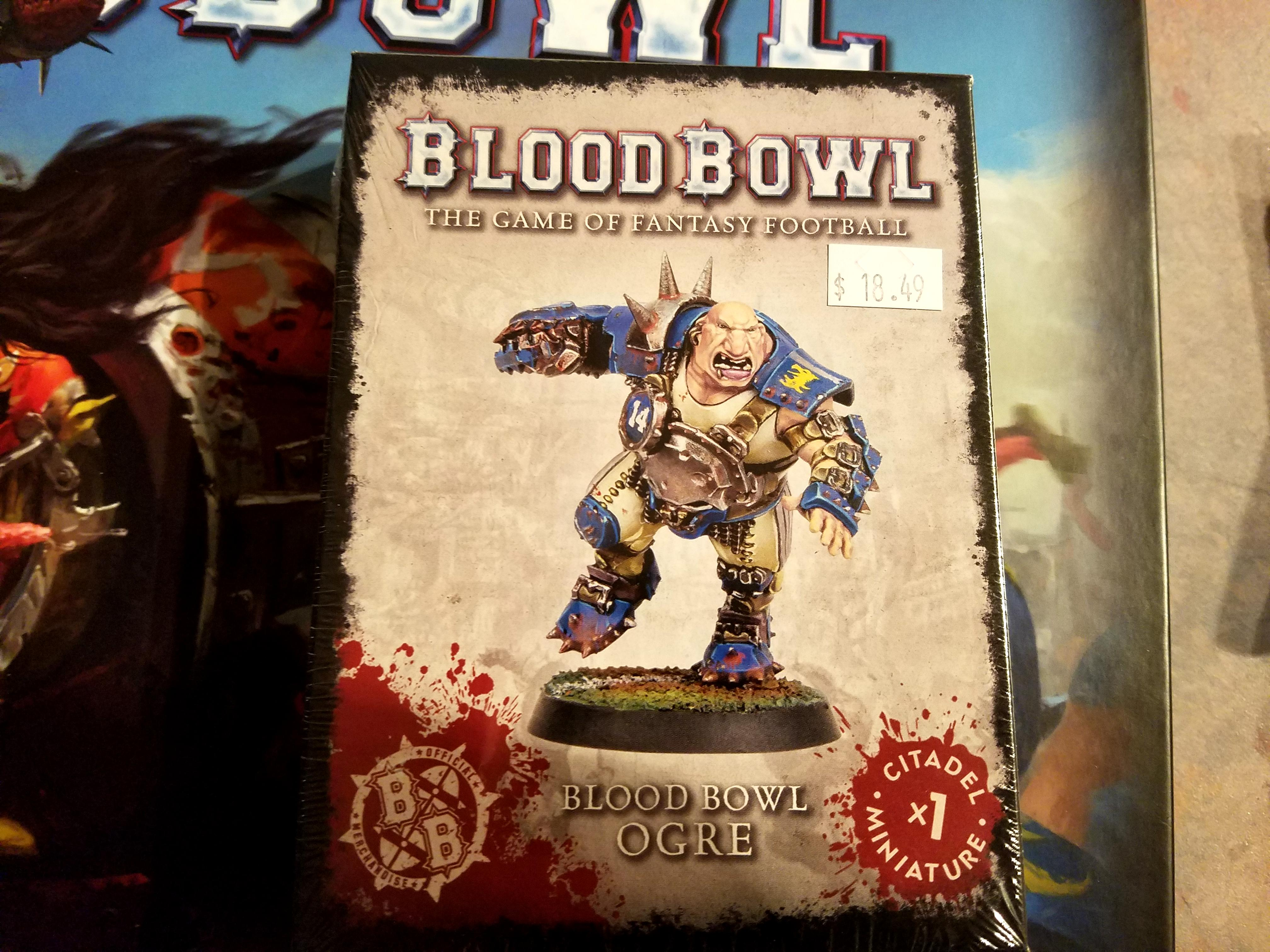Blood Bowl 02