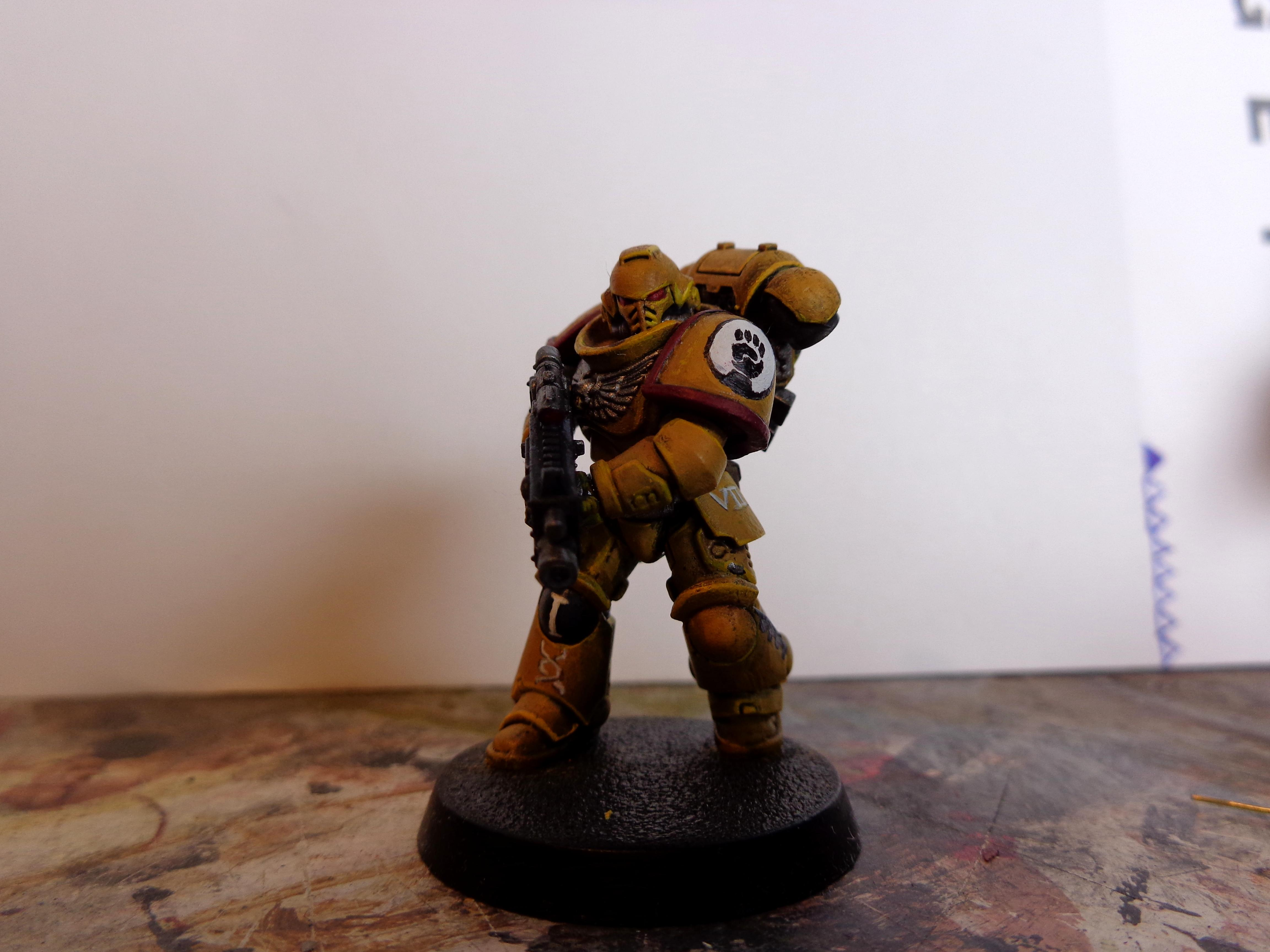 Imperial Fists, Primaris, Yellow