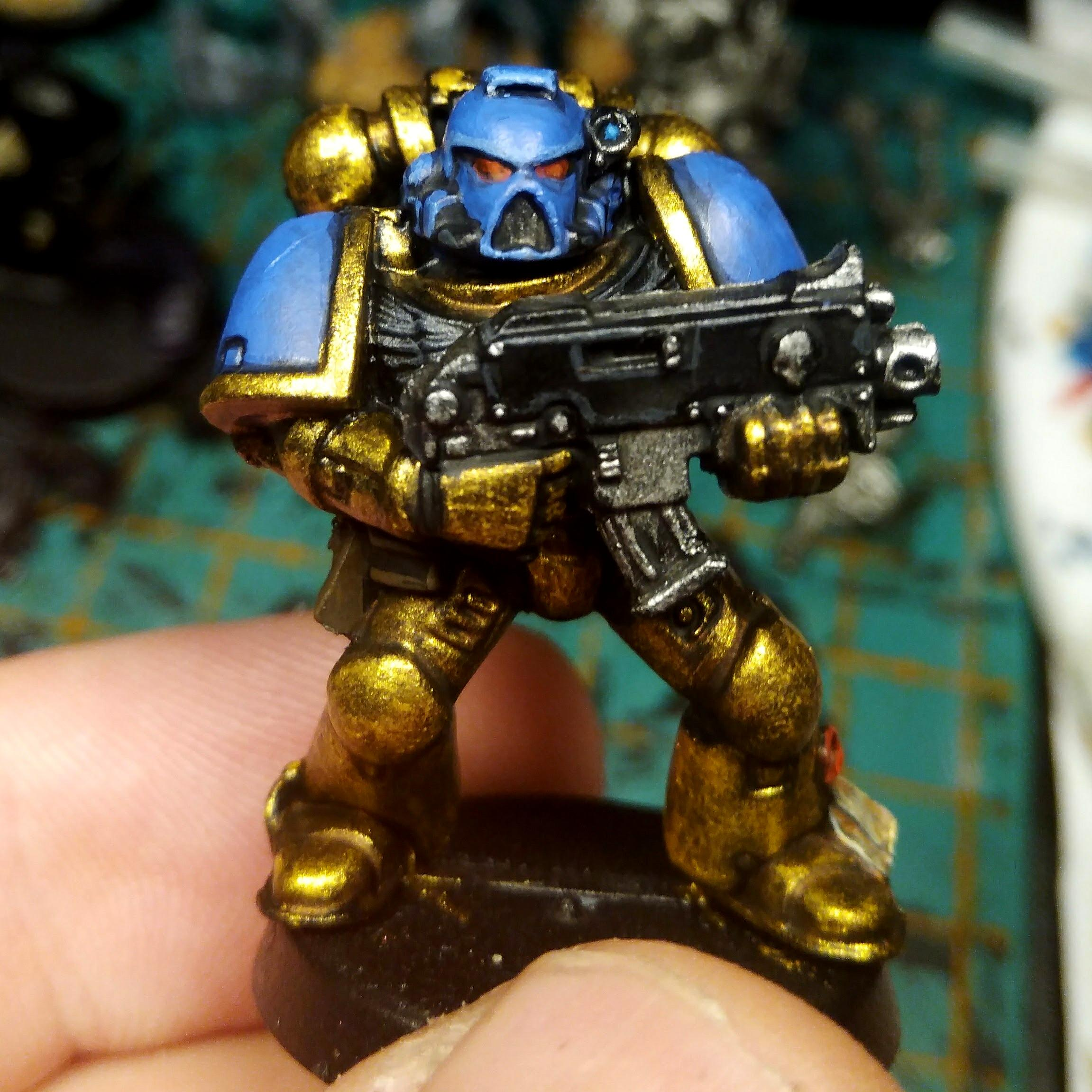 Celestial Lions, Space Marines, Tactical Squad