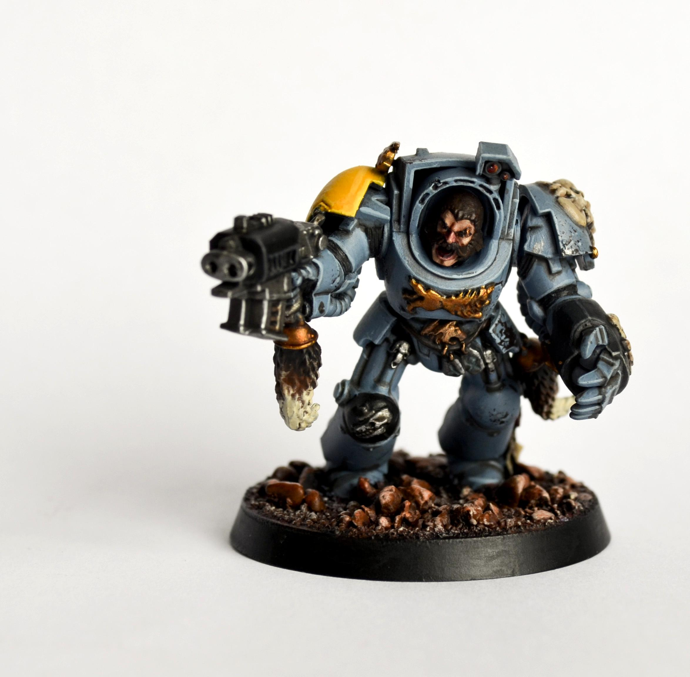 Armor, Head, Magnet, Power Fist, Space Wolves, Stormbolter, Terminator Armor, Wolf, Wolf Guard, Yellow