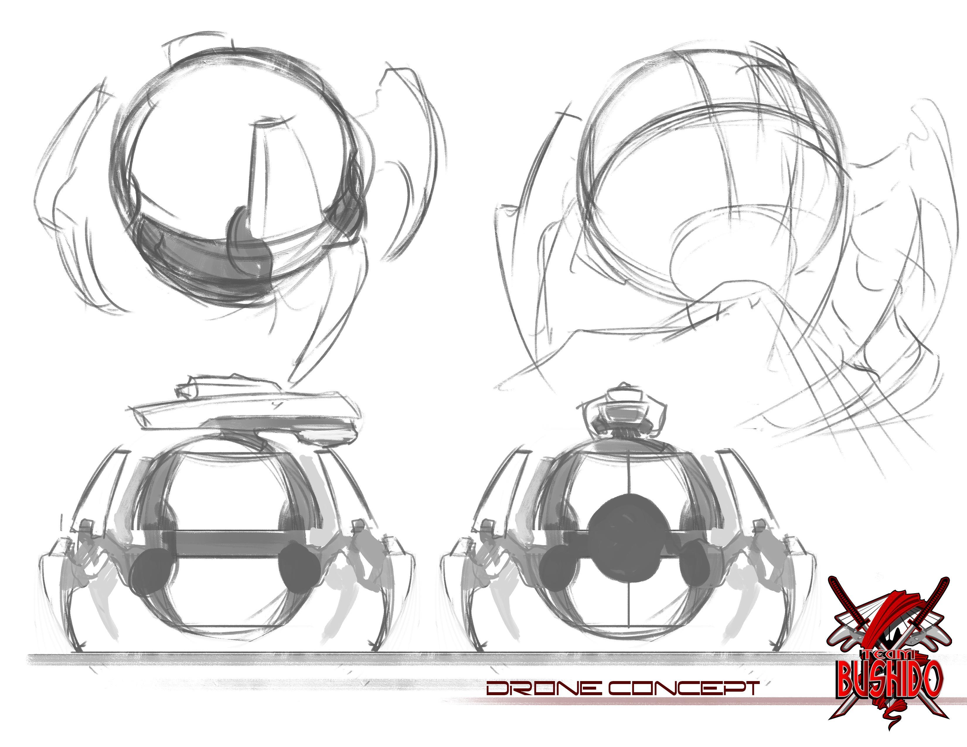 Team Bushido Drone Concept