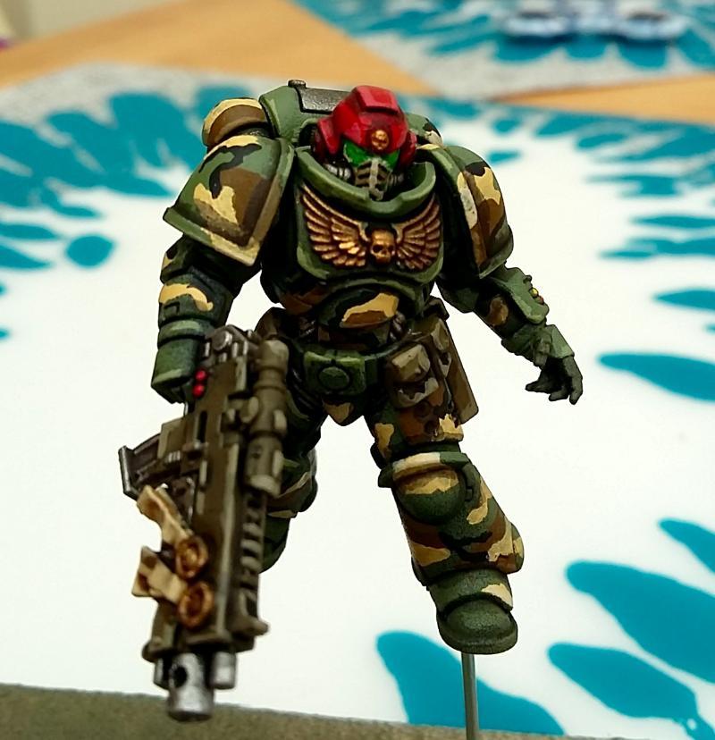 Camouflage, Imperial, Primaris, Space Marines, Warhammer 40,000