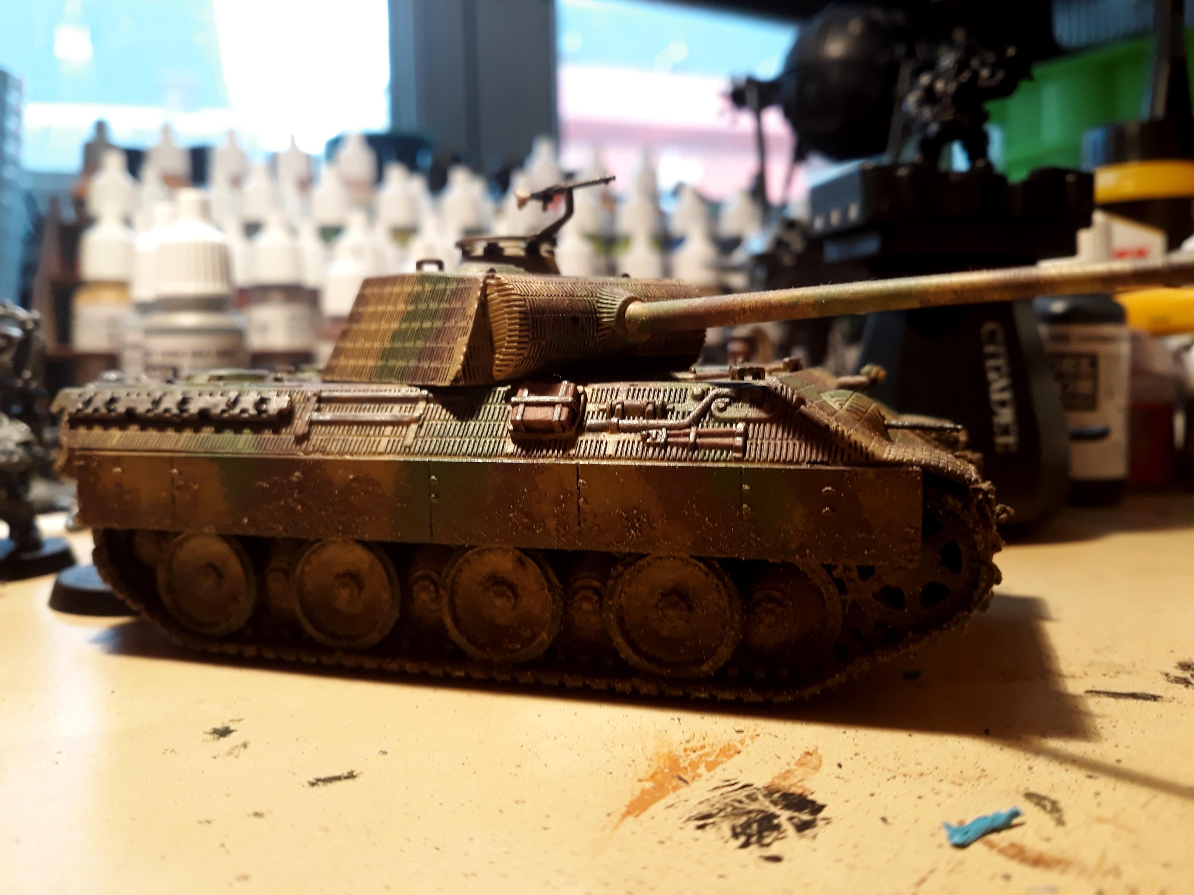 Big Cat, Germans, Panther, Panzer, World War 2