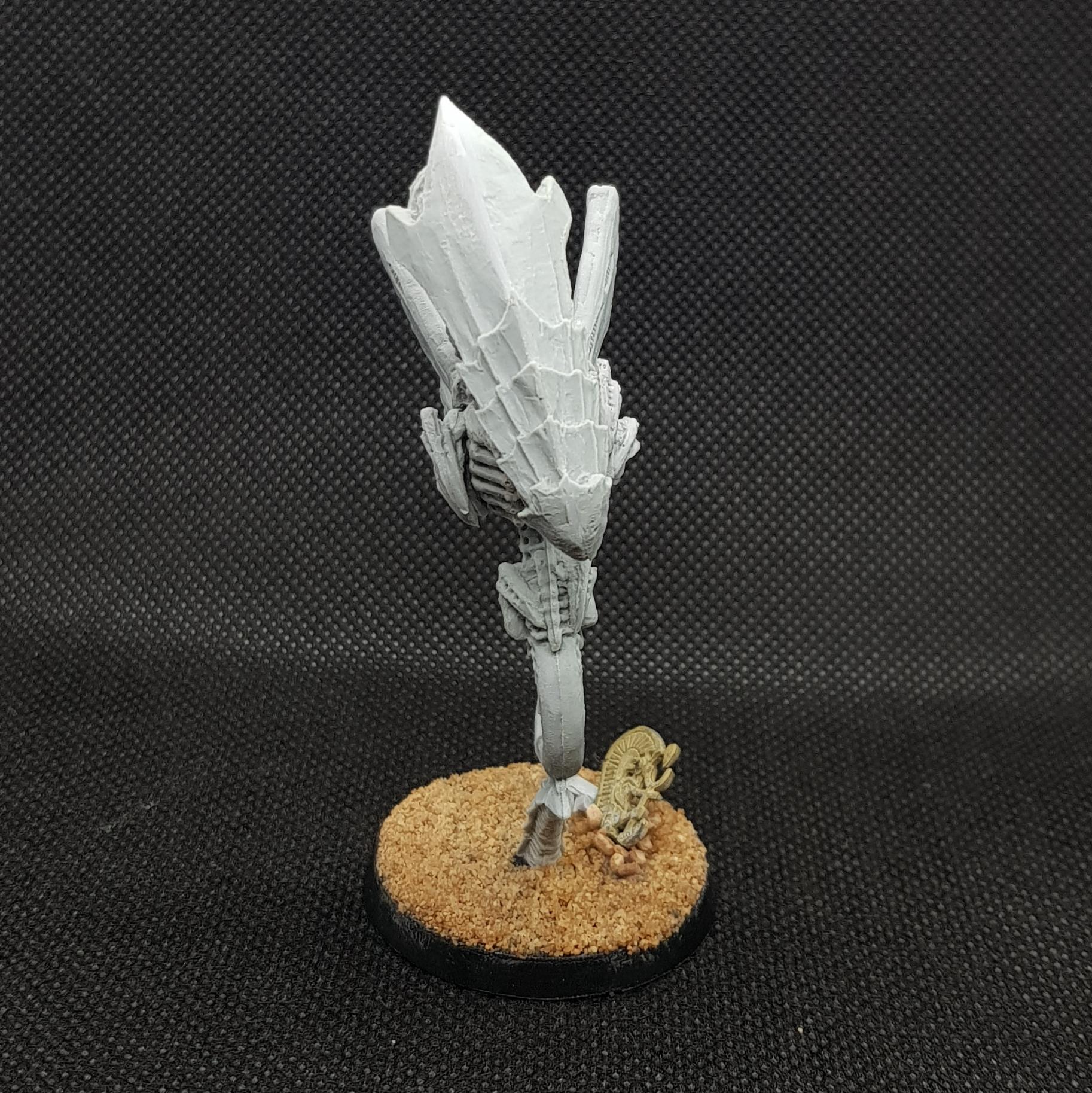 Zoanthrope (test shot)