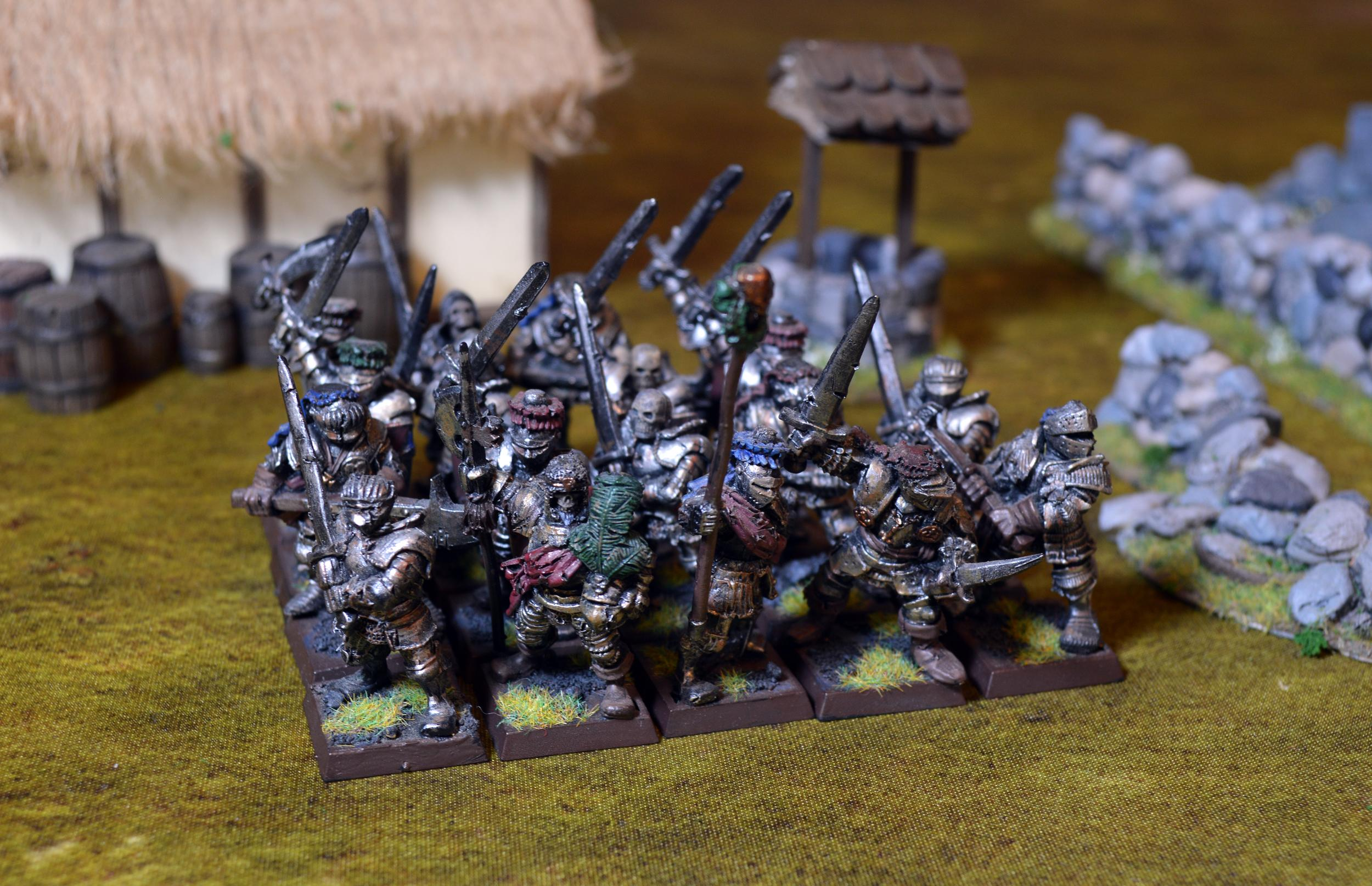 Count's retinue/household guard