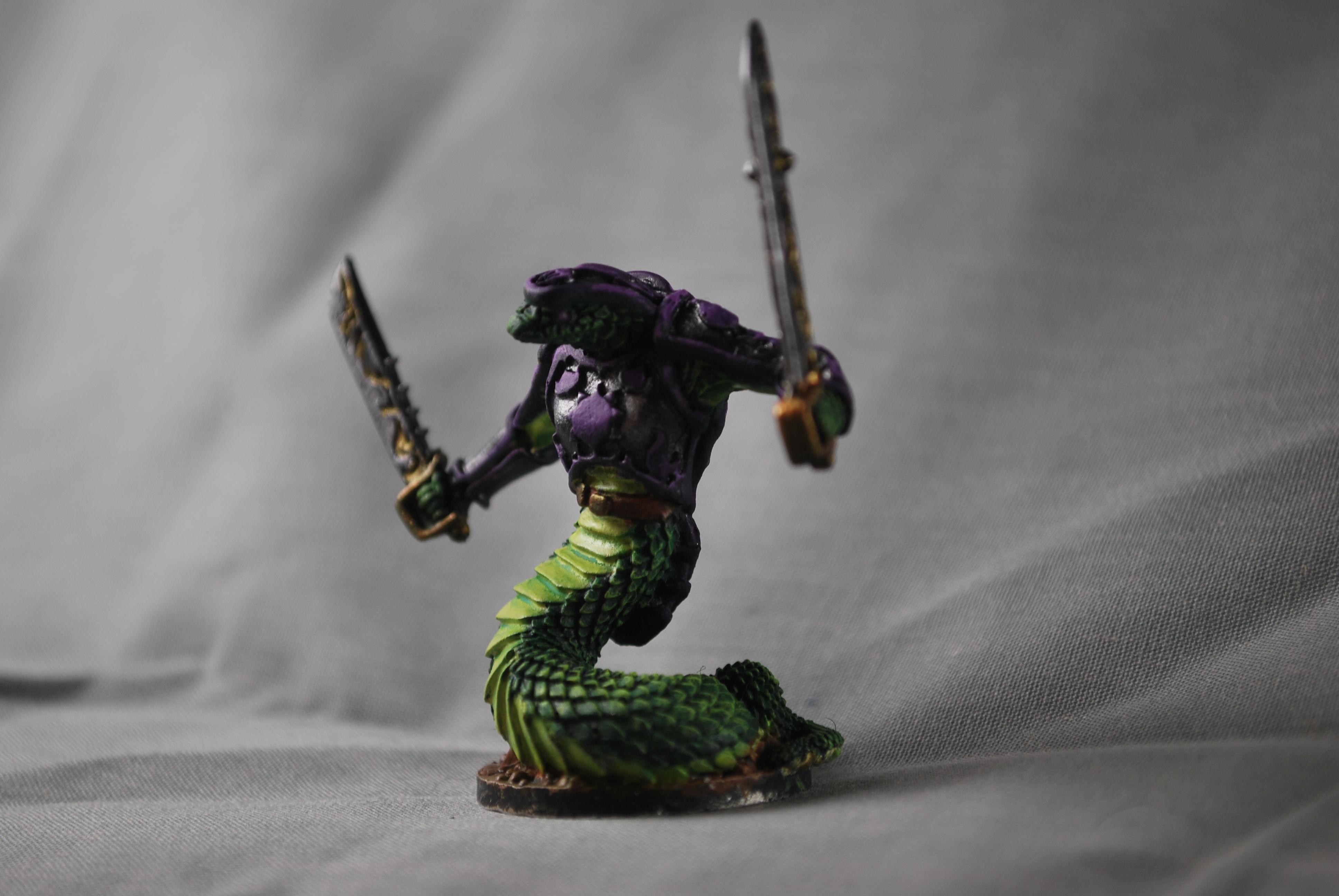 Captain, Dakka Painting Challenge 2018, Nagrada, Reaper, Reaper Miniatures, Snake, Snake Man, Two Weapons