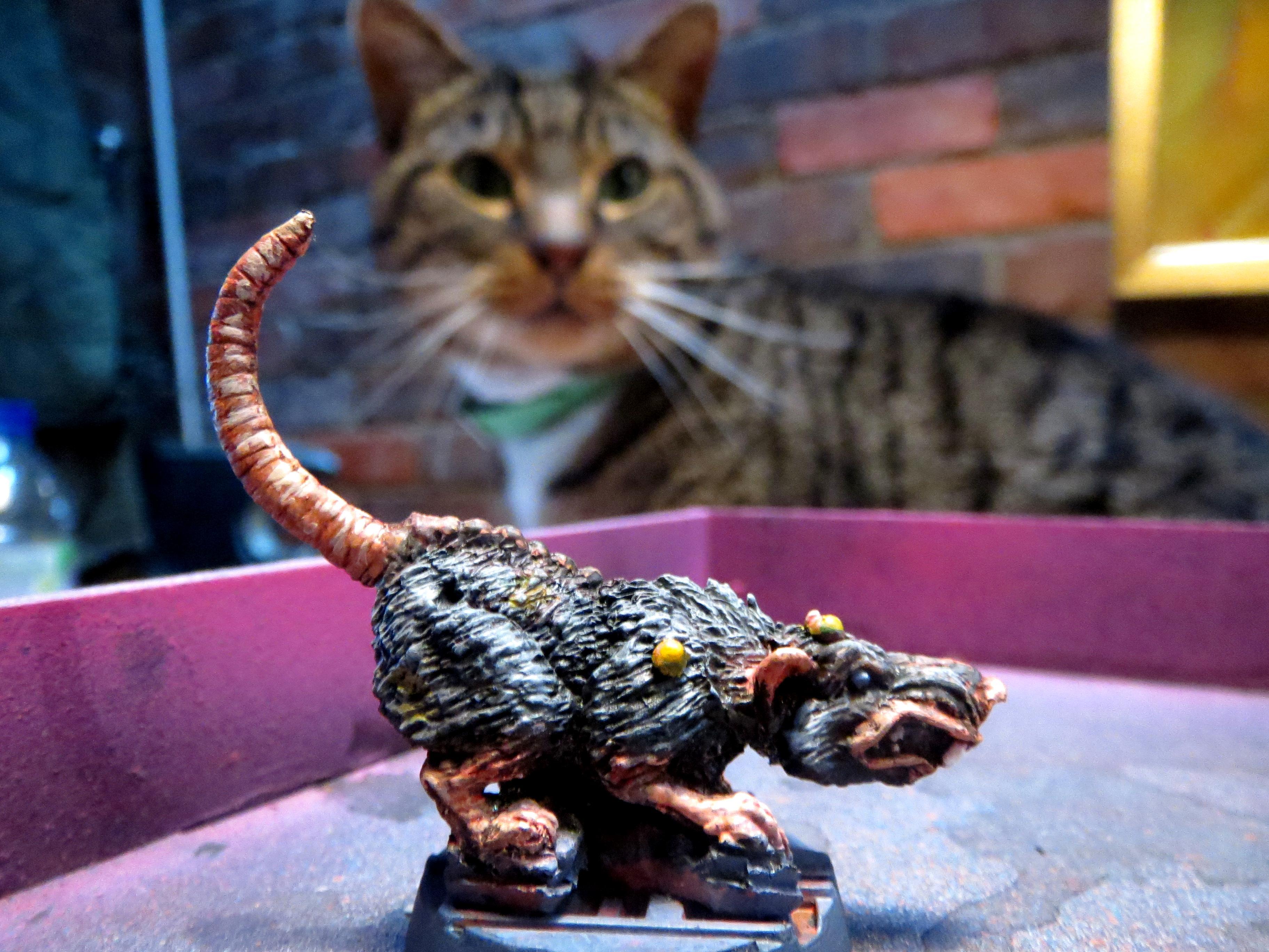 Cat!, Cat%21, Giant Rat, Necromunda, Rat
