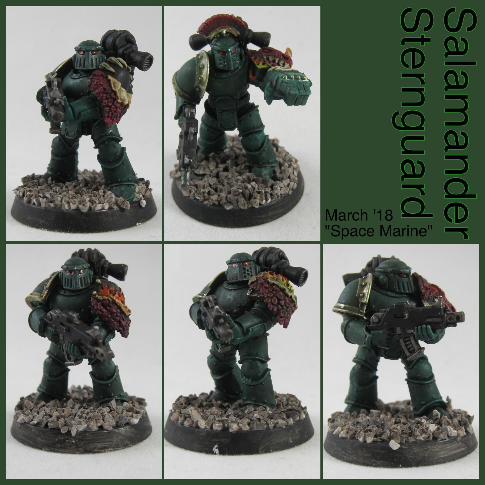 Salamanders, Space, Space Marines, Sternguard, Veteran