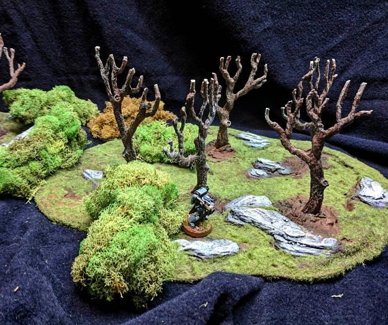 Woodland terrain!