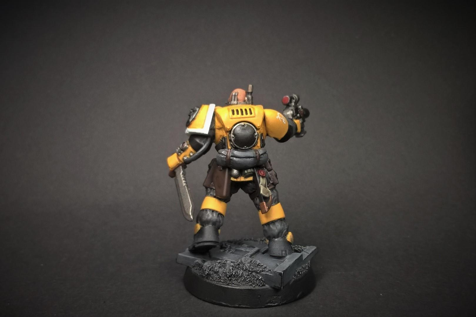 Conversion, Imperial Fists, Primaris, Solar Lions, Space Marines, Warhammer 40,000