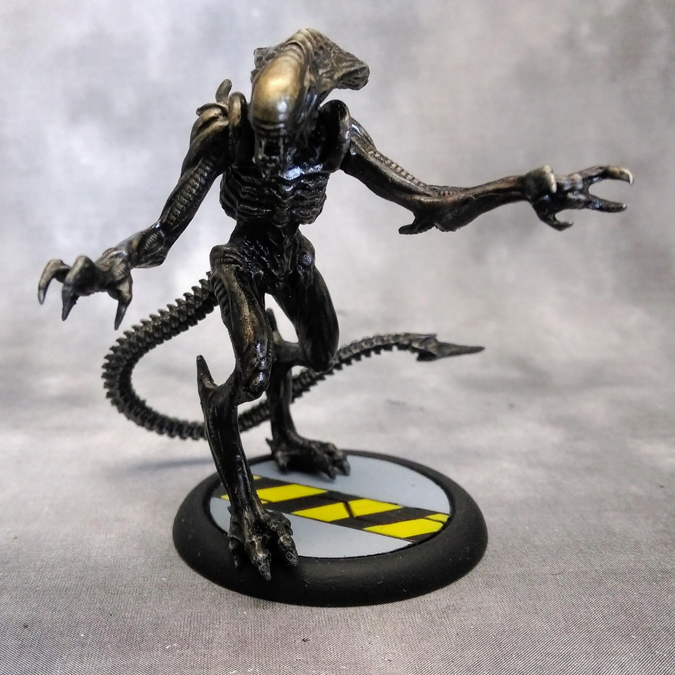 Alien, Avp, Predator, Space Marines