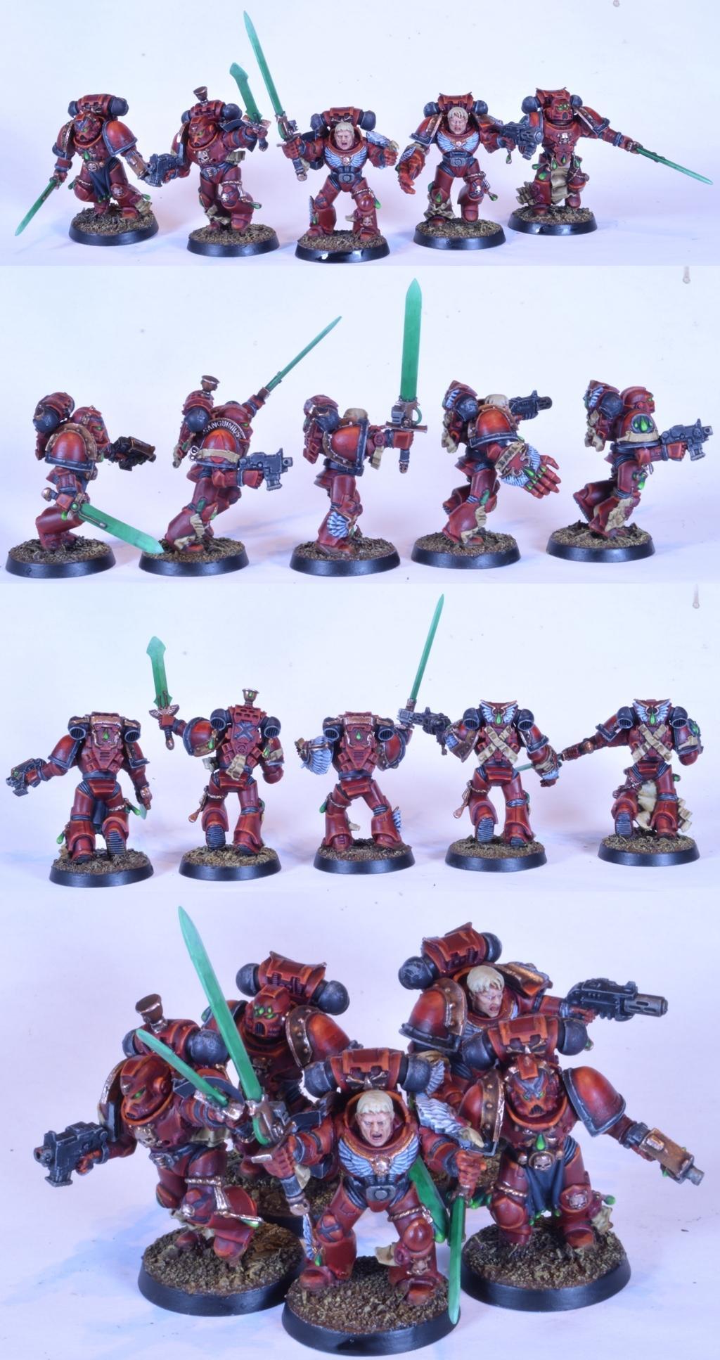 Assault, Knights Sanguine, Knights Sanguine Space Marines, Veteran